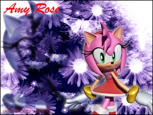 Amy Rose, Sonic