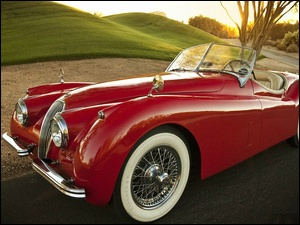 Roadster, 1954, XK, Jaguar, 120