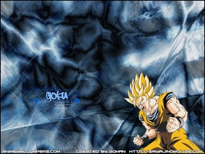 Dragon Ball, m�czyzna, pi��, z�o��