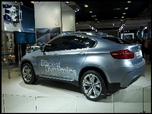 Salon, BMW, X6