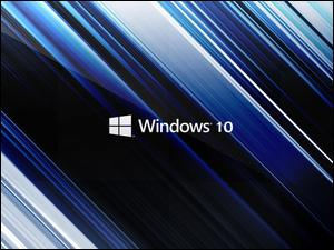 Windows 10, Pasy