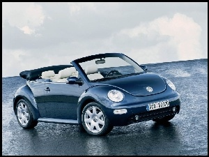 Cabrio, New Beetle, Bia�a Sk�ra
