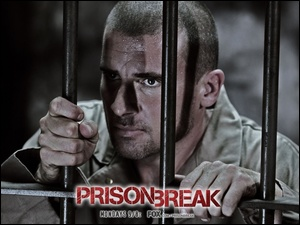 kraty, Prison Break, Dominic Purcell