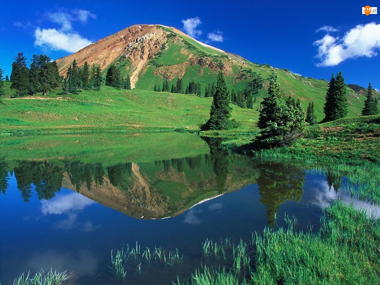Trawa, Odbicie, Kolorado, Góra, Woda, Drzewa