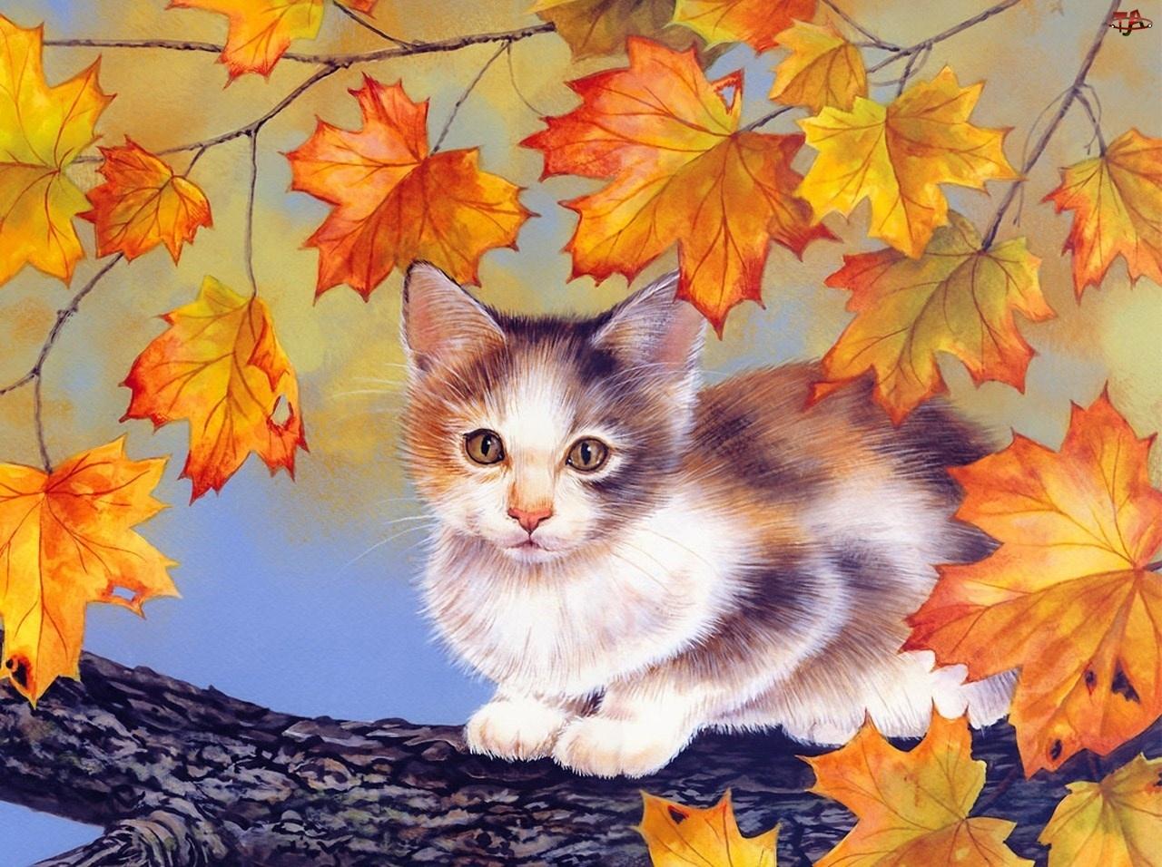 Kot, Liście, Na, Drzewie