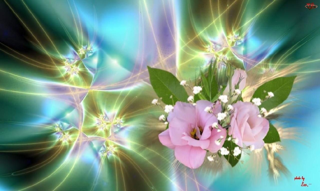 Smugi, Kwiaty, Bukiet