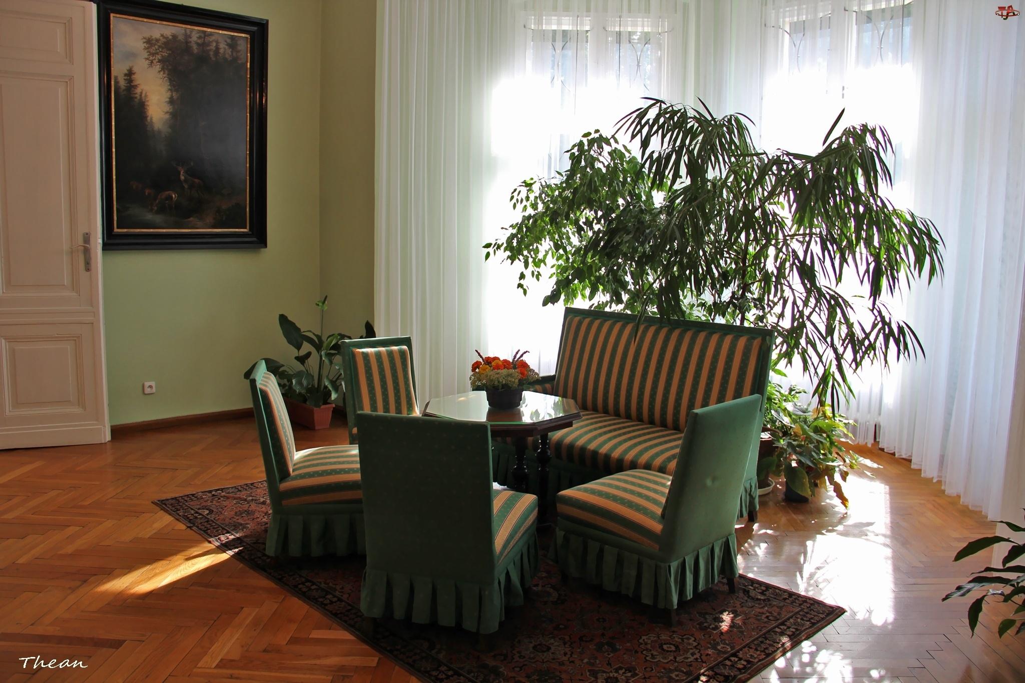 Wnętrze, Meble, Pałacowe, Pokój