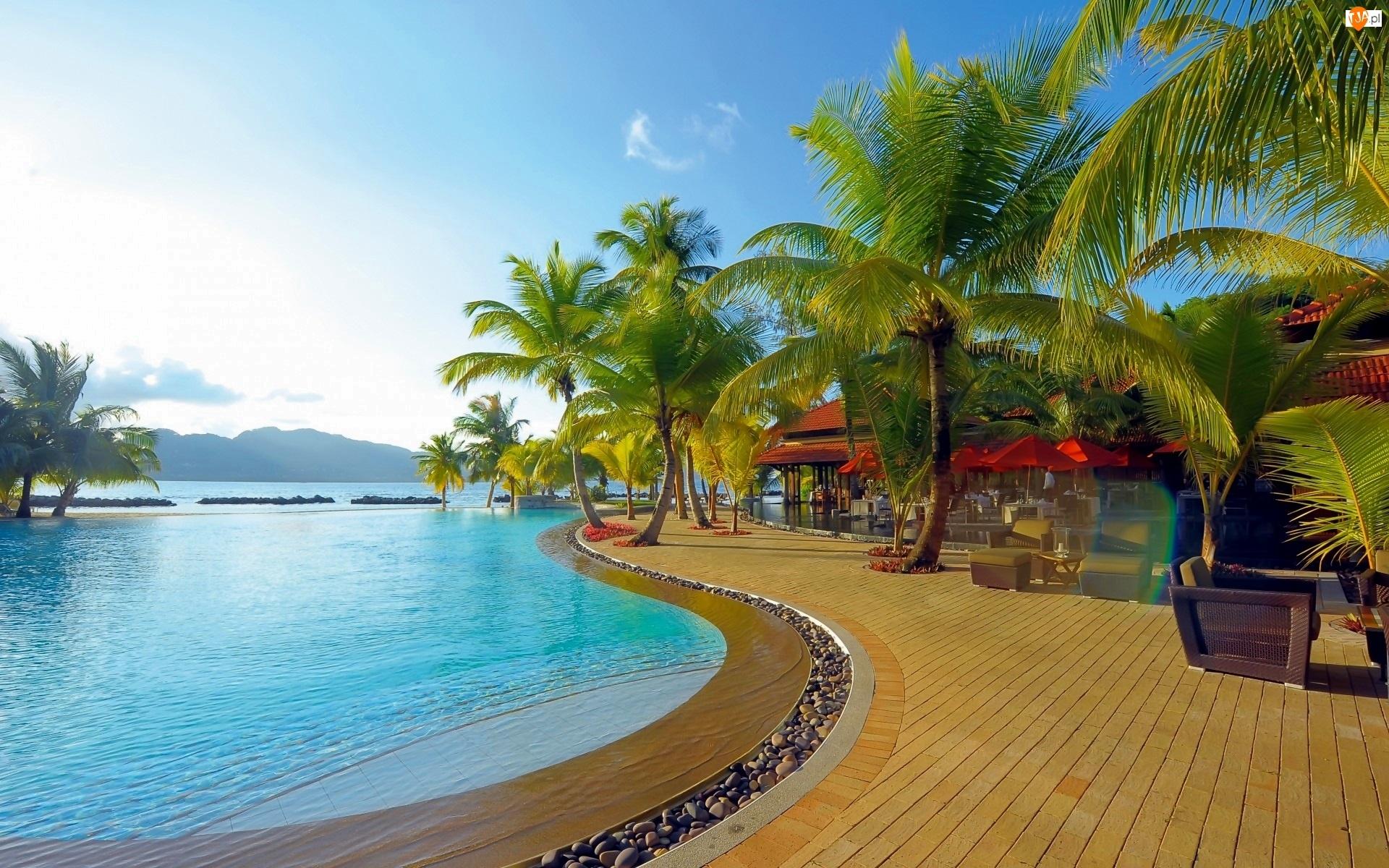 Tropiki, Ocean, Hotelowa Restauracja, Basen, Kurort