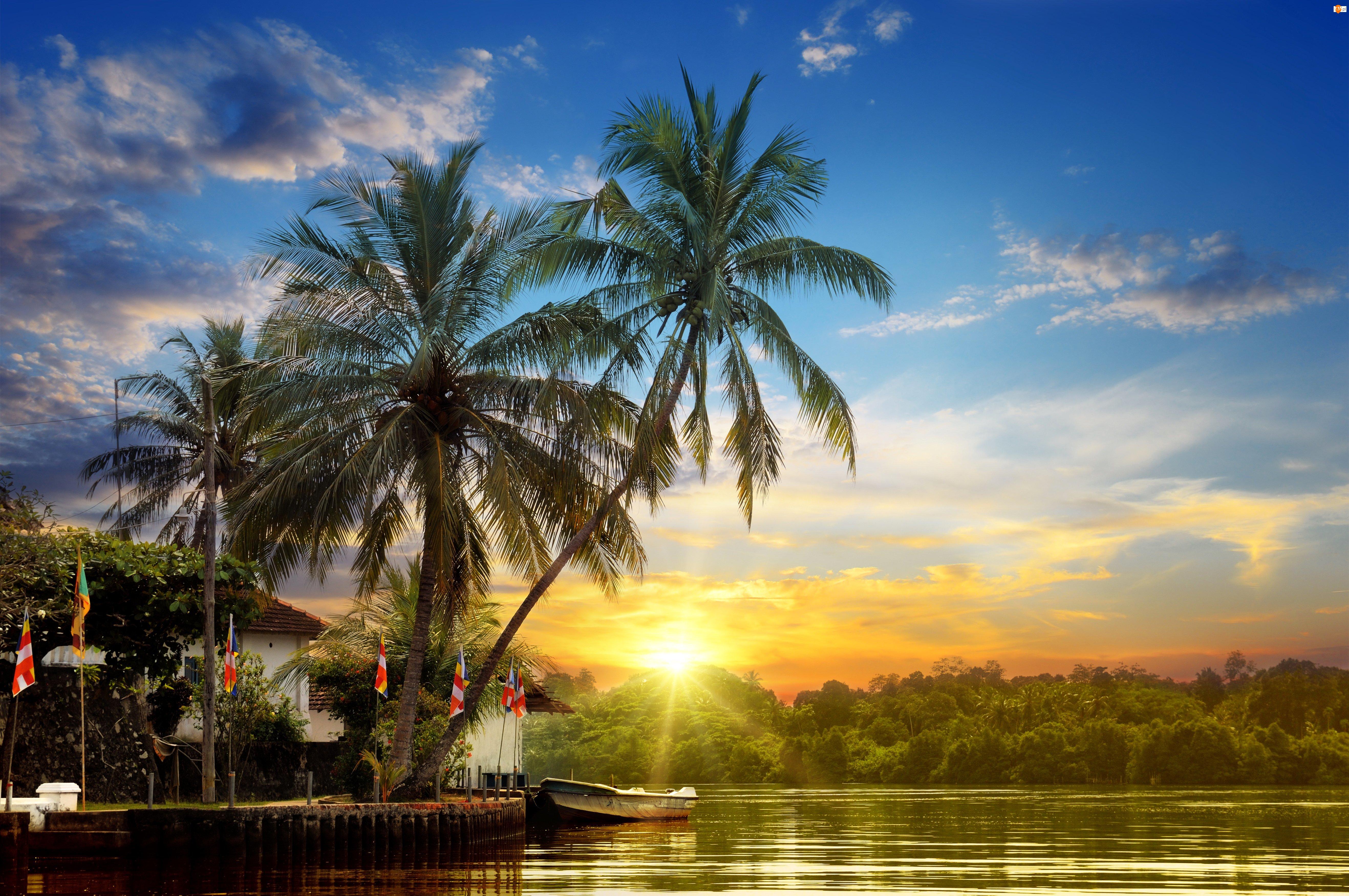 Palmy, Wschód słońca, Łodzie