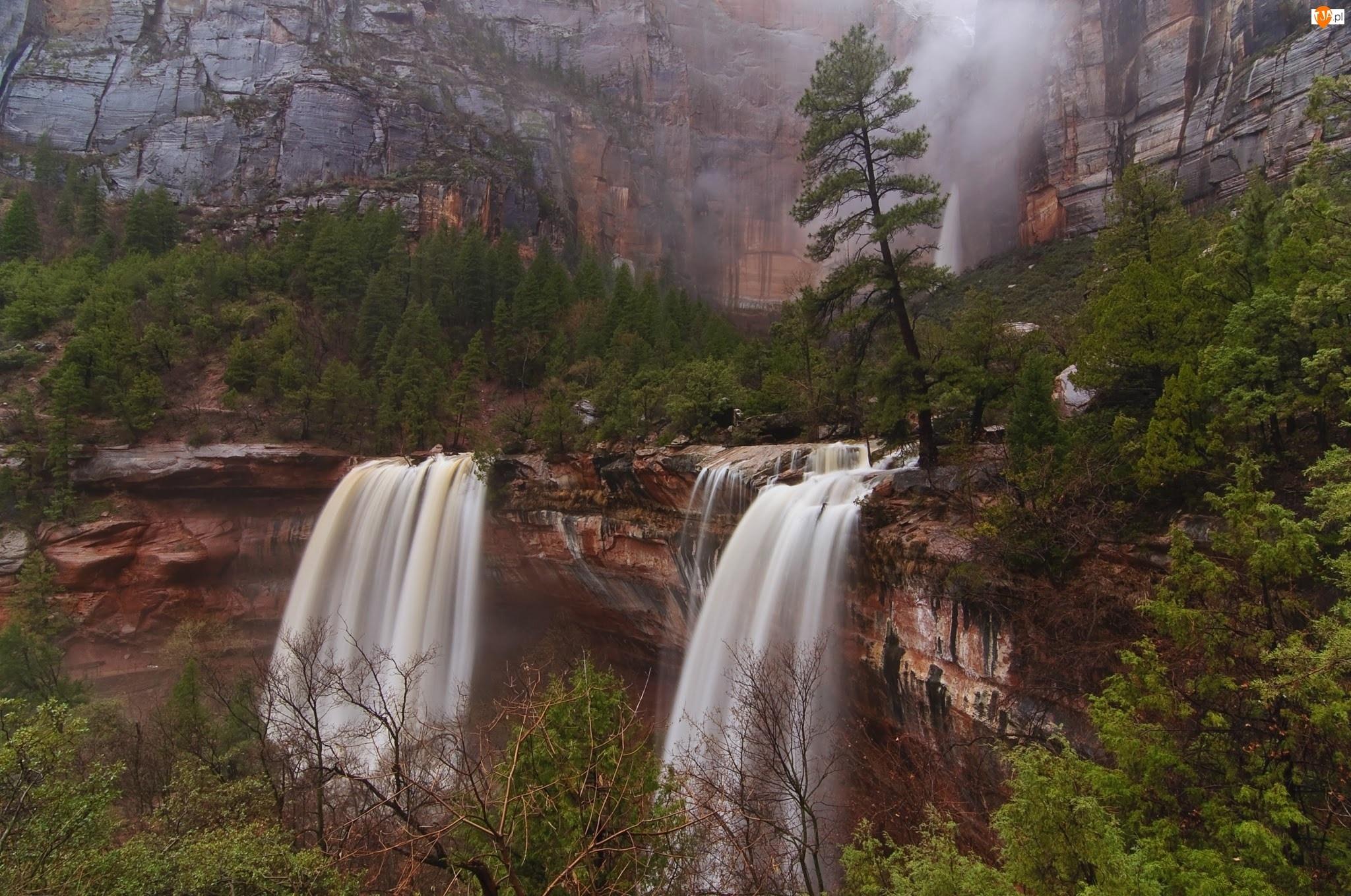 Skały, Wodospad, Drzewa