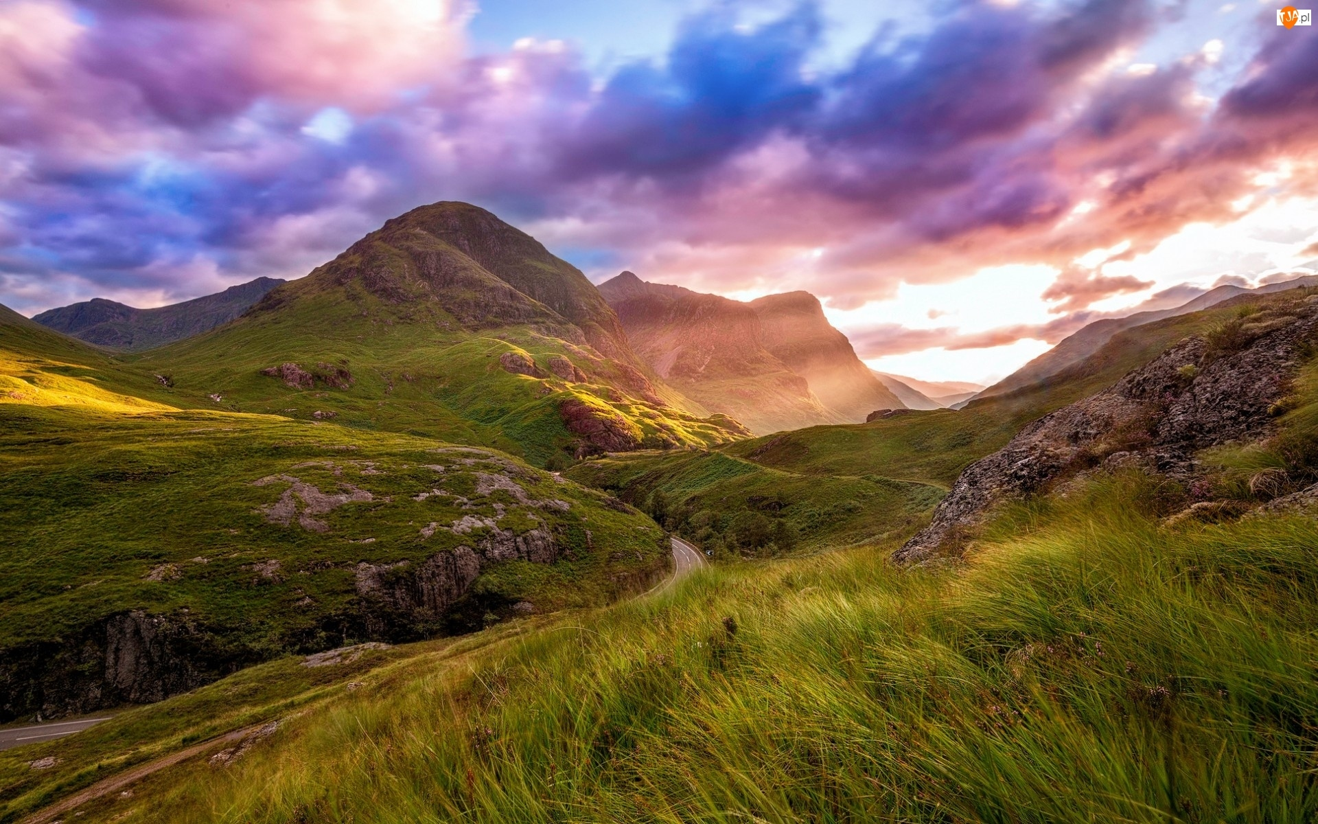 Trawą, Droga, Wzgórz, Pośród, Porośniętych