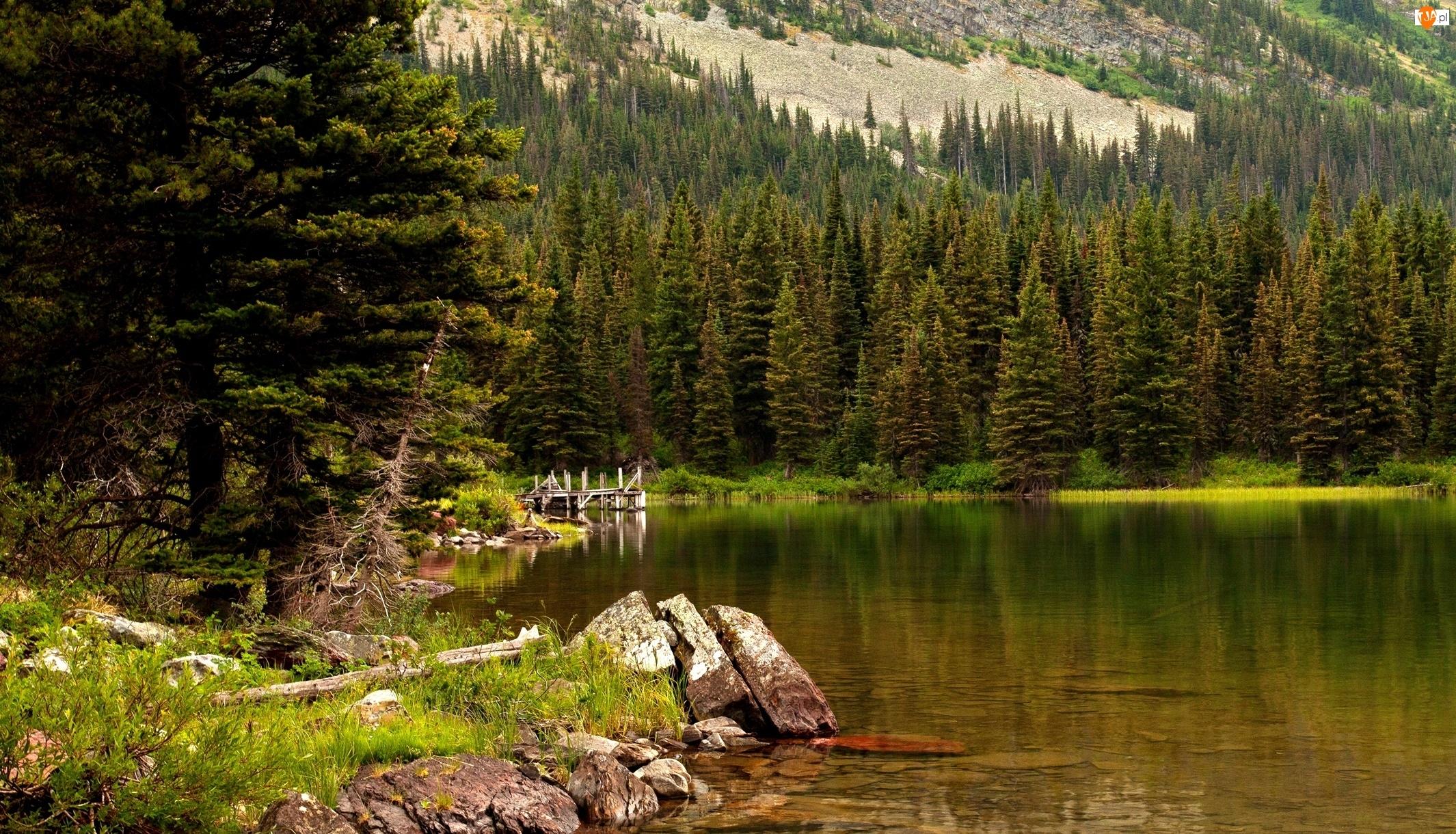 Góry, Jezioro, Park Narodowy Glacier, Swiftcurrent, Lasy