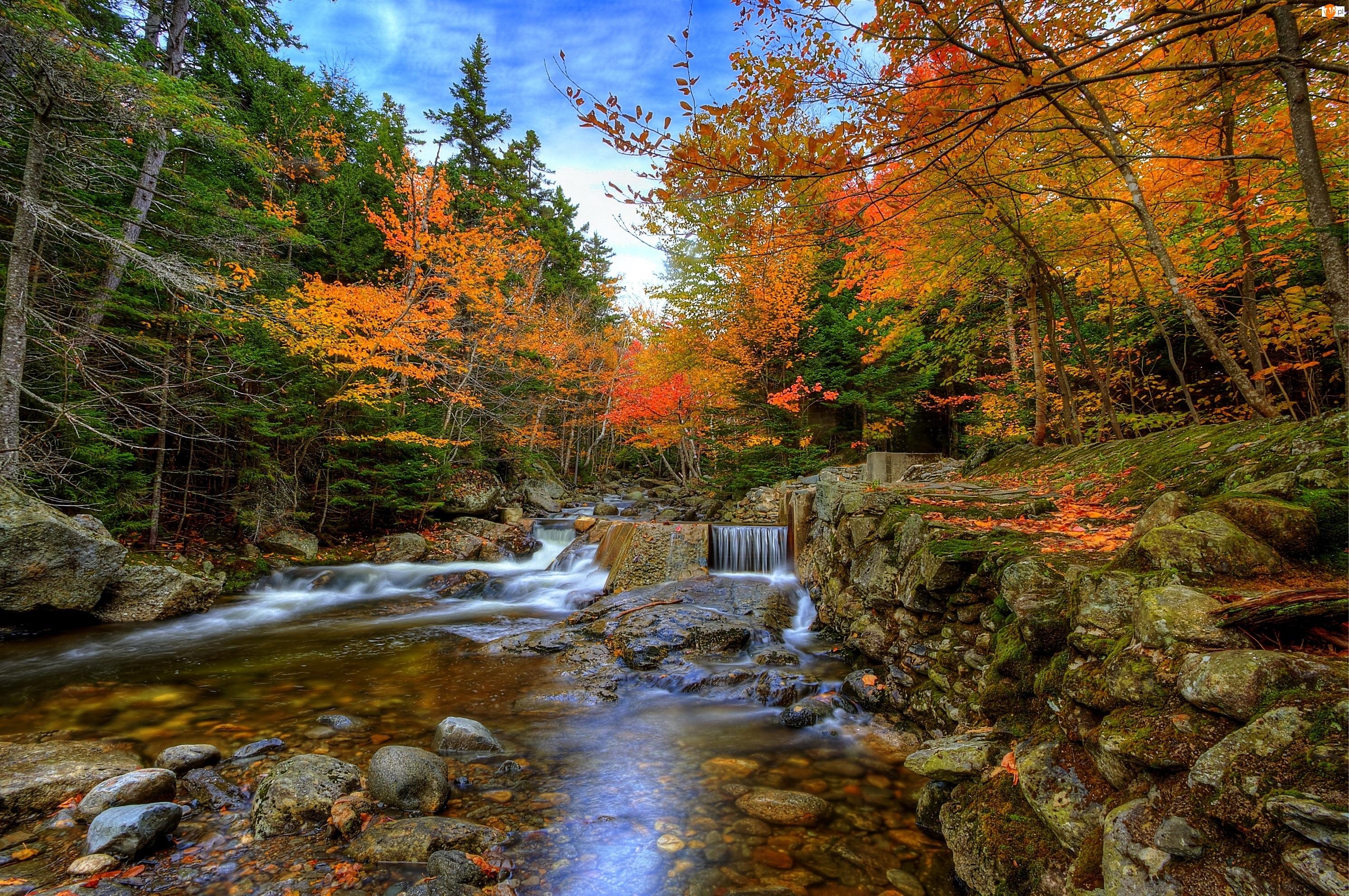 Jesień, Kamienie, Rzeka, Las