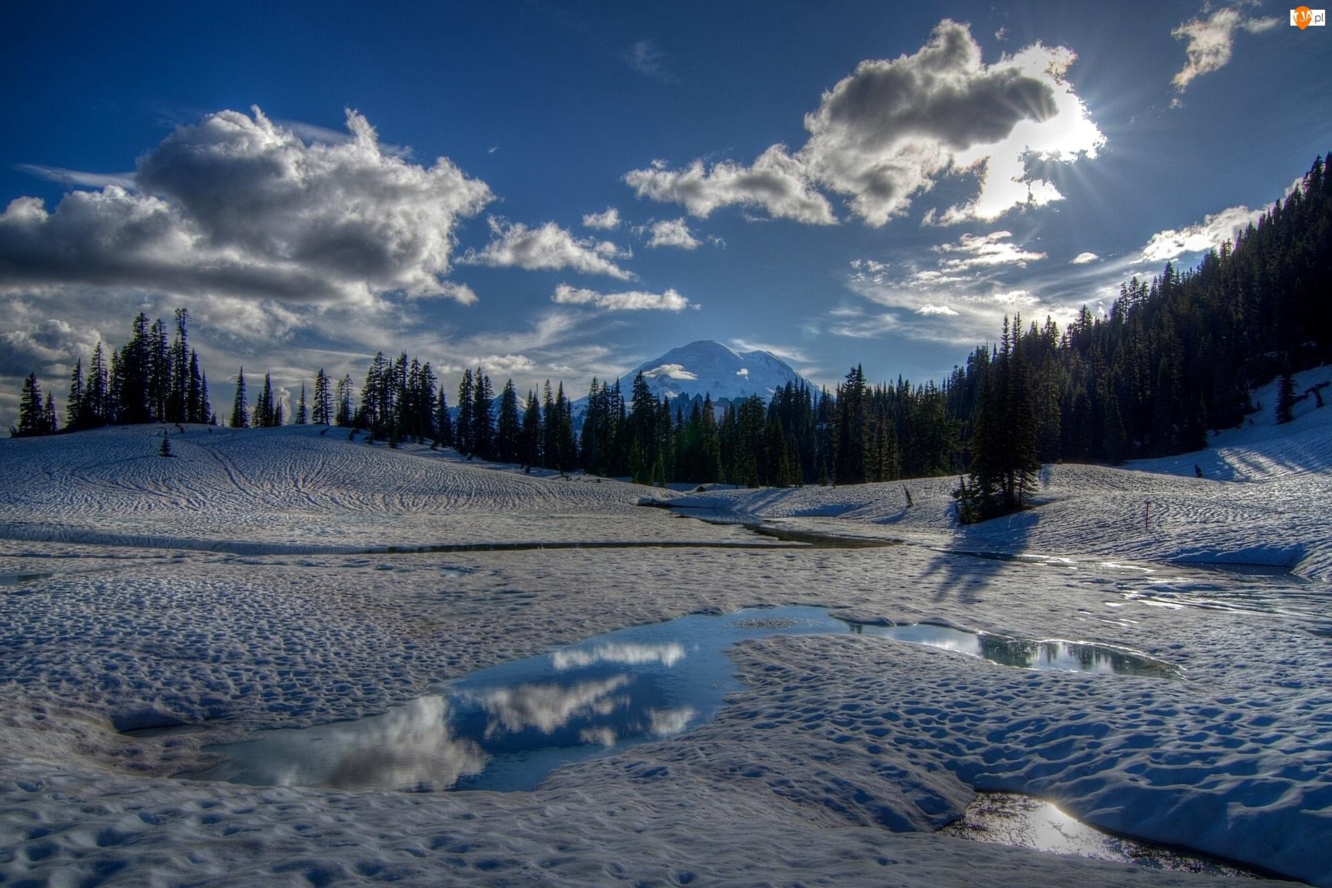 Las, Park Narodowy Mount Rainier, Zima, USA, Jezioro Tipsoo, Promienie Słońca