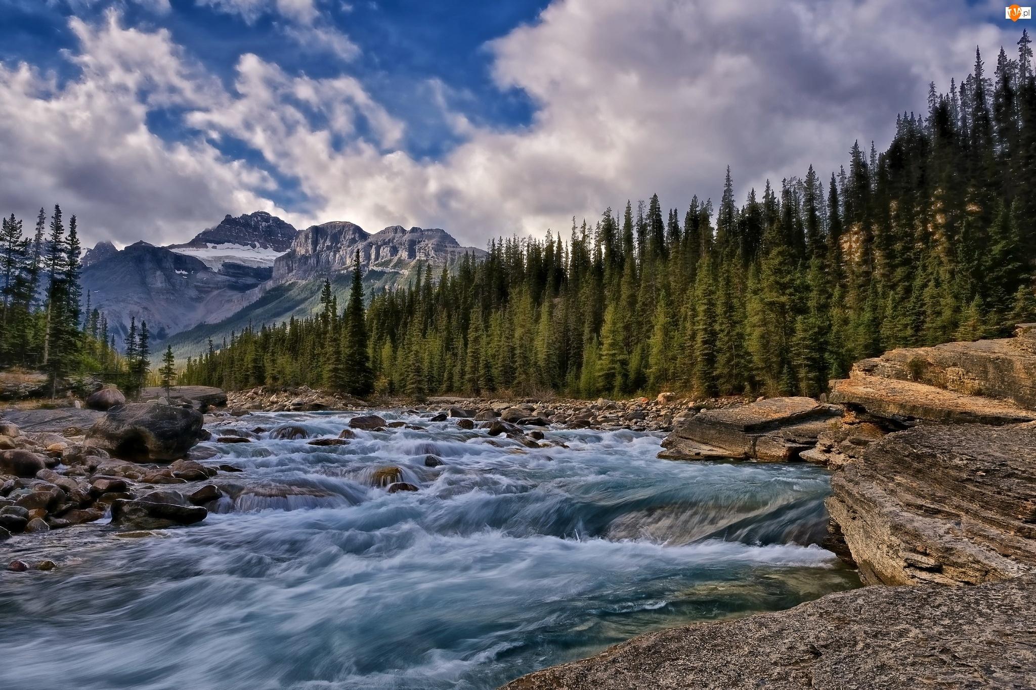 Rzeka, Kamienie, Góry, Las