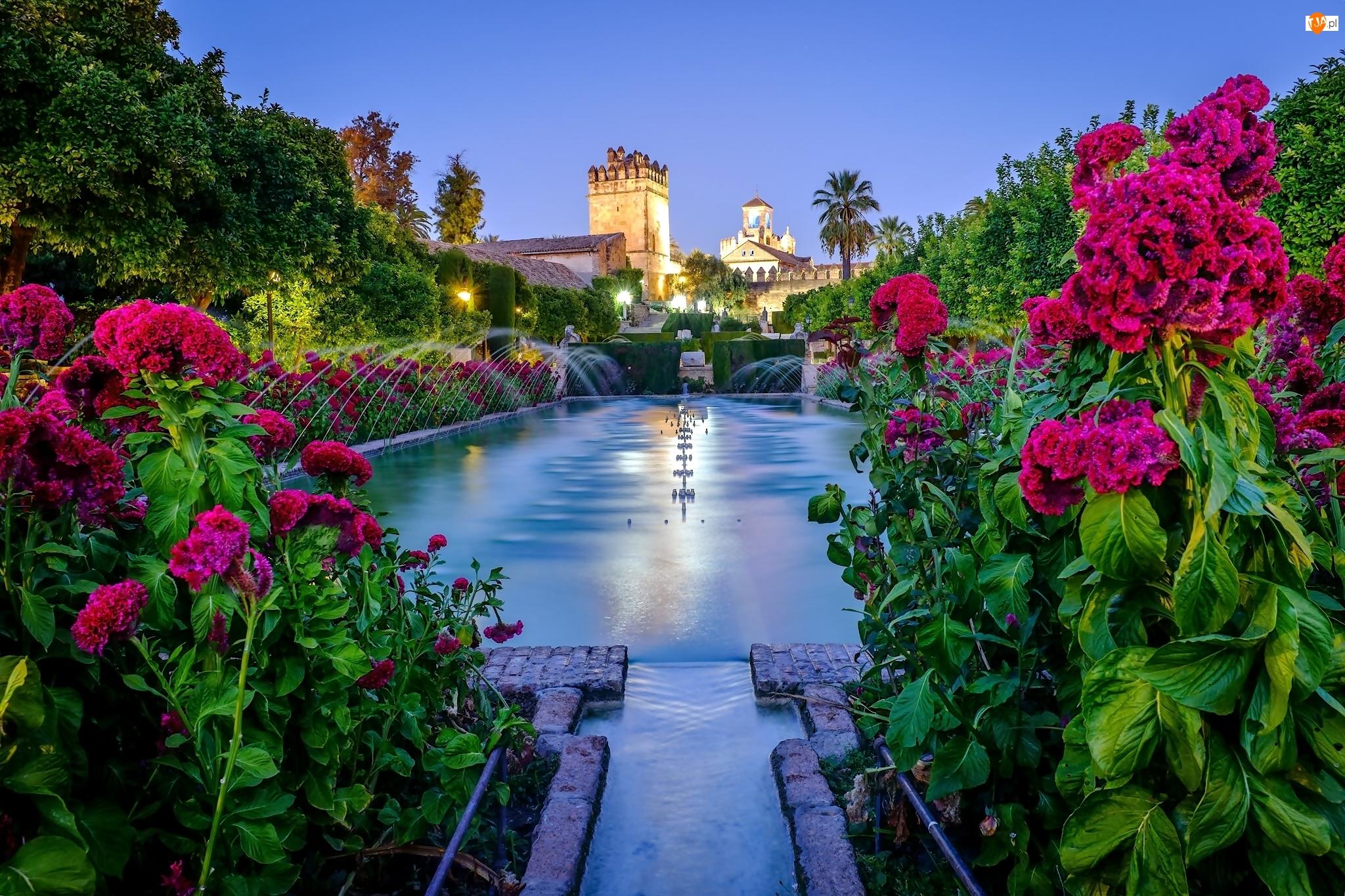 Kwiaty, Zamek, Fontanna