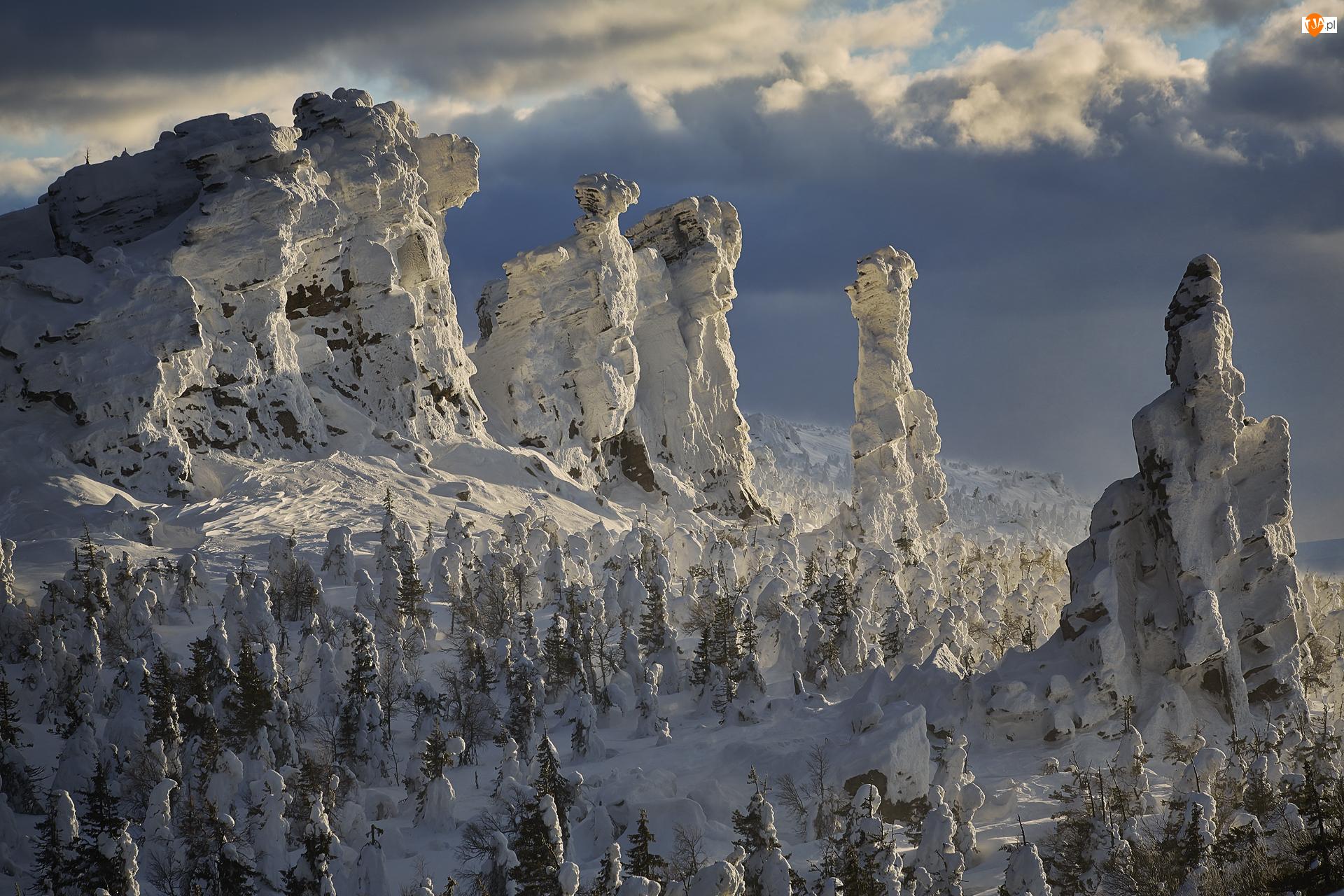 Drzewa, Chmury, Zima, Śnieg, Góry, Świerki