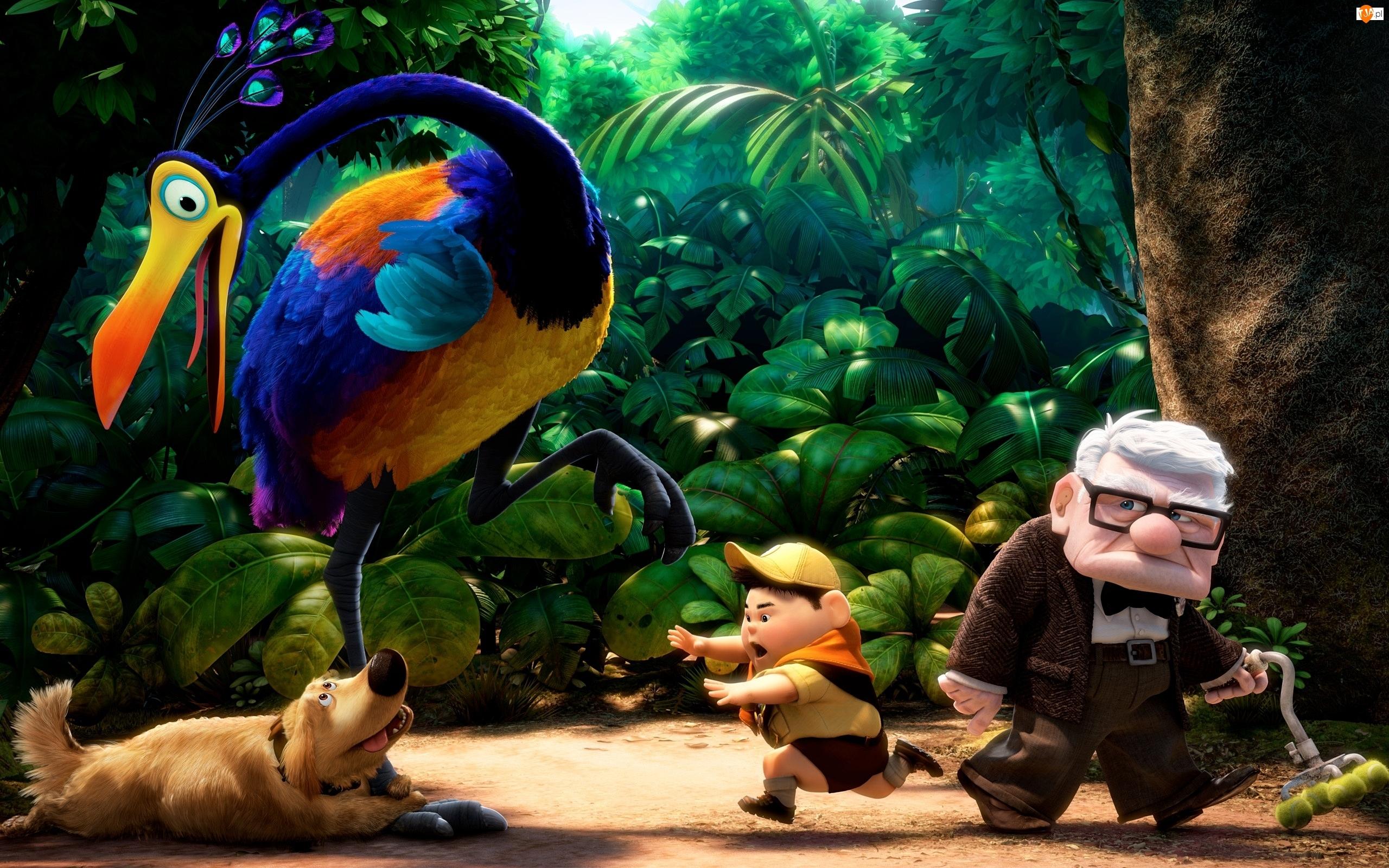 Ptak Stefan, Film animowany, Dziadek Carl Fredricksen, Odlot, Skaut Russell