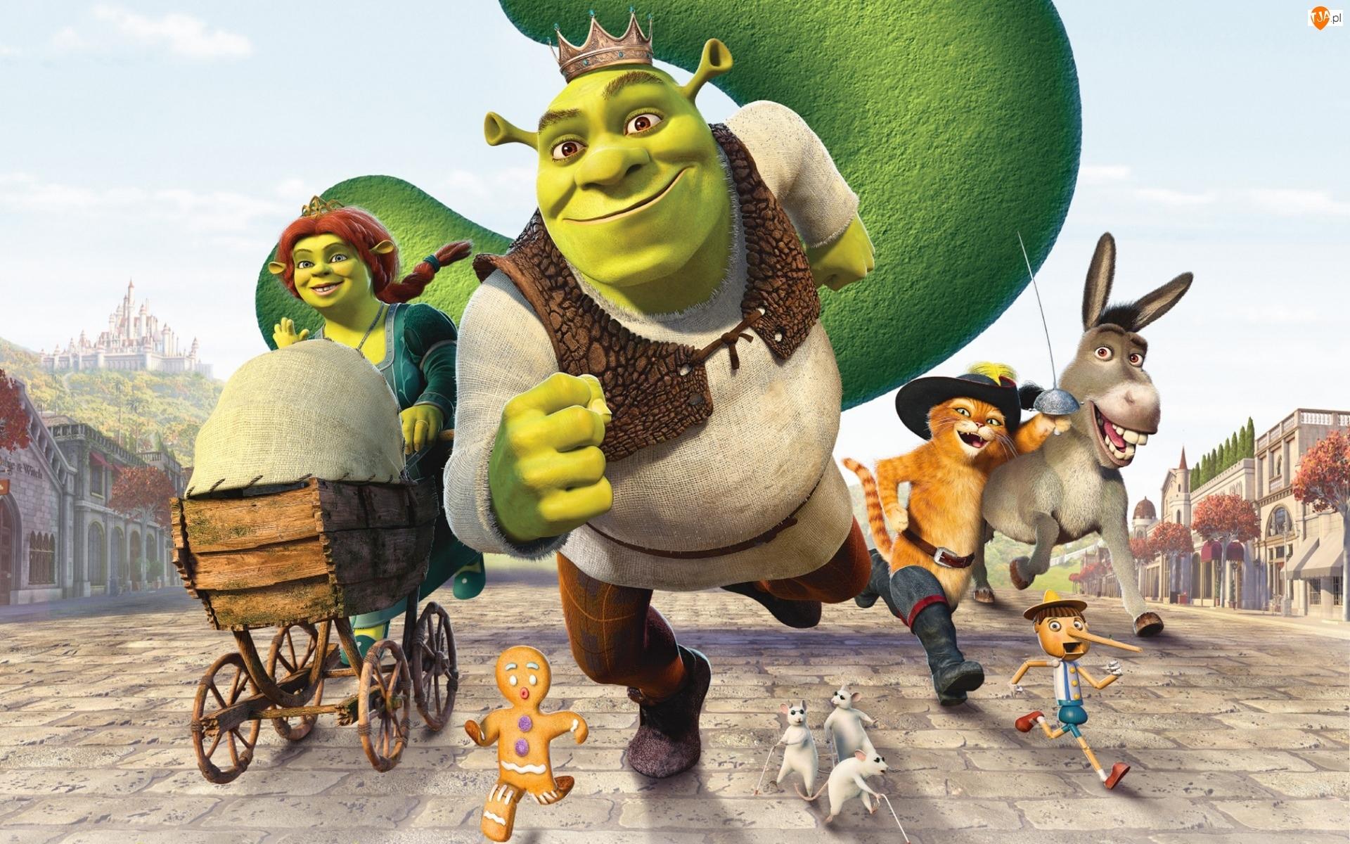 Film, Fiona, Bajka, Shrek