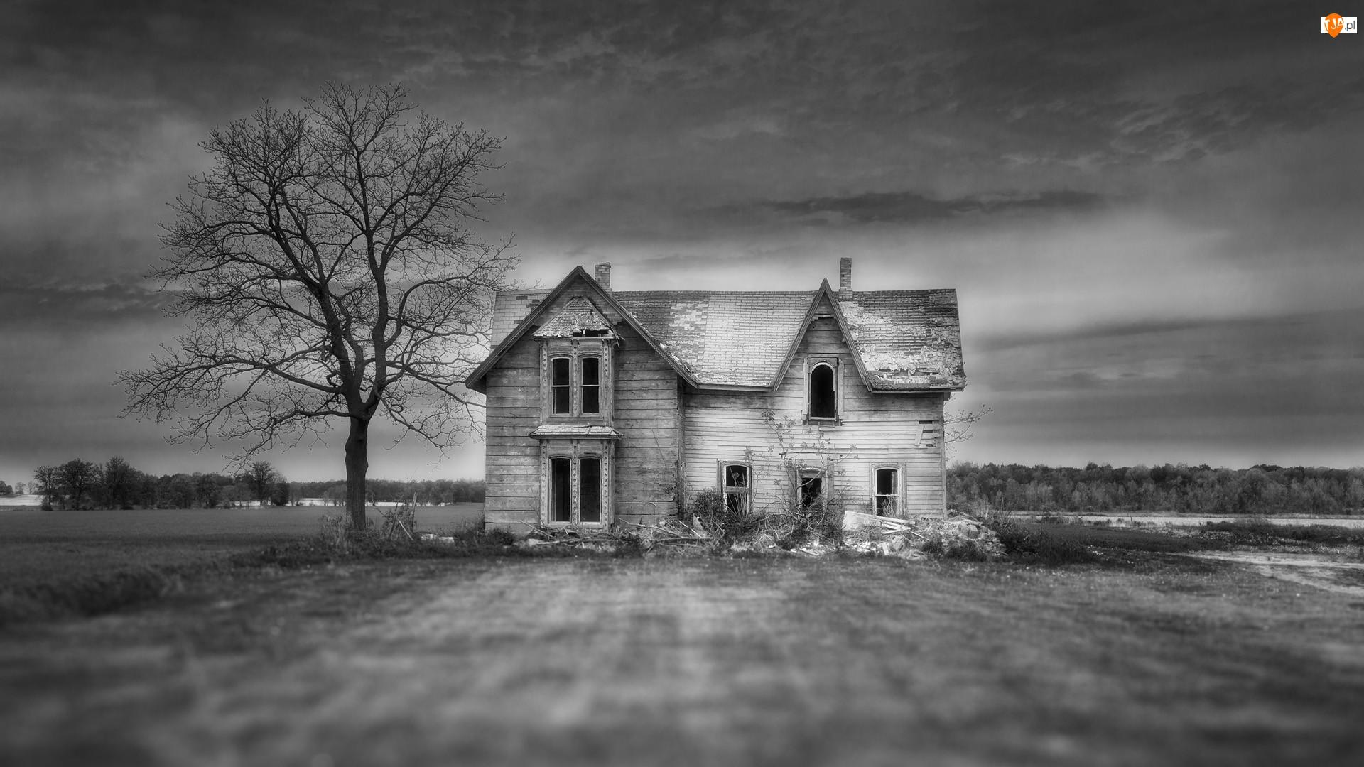 Opuszczony, Dom