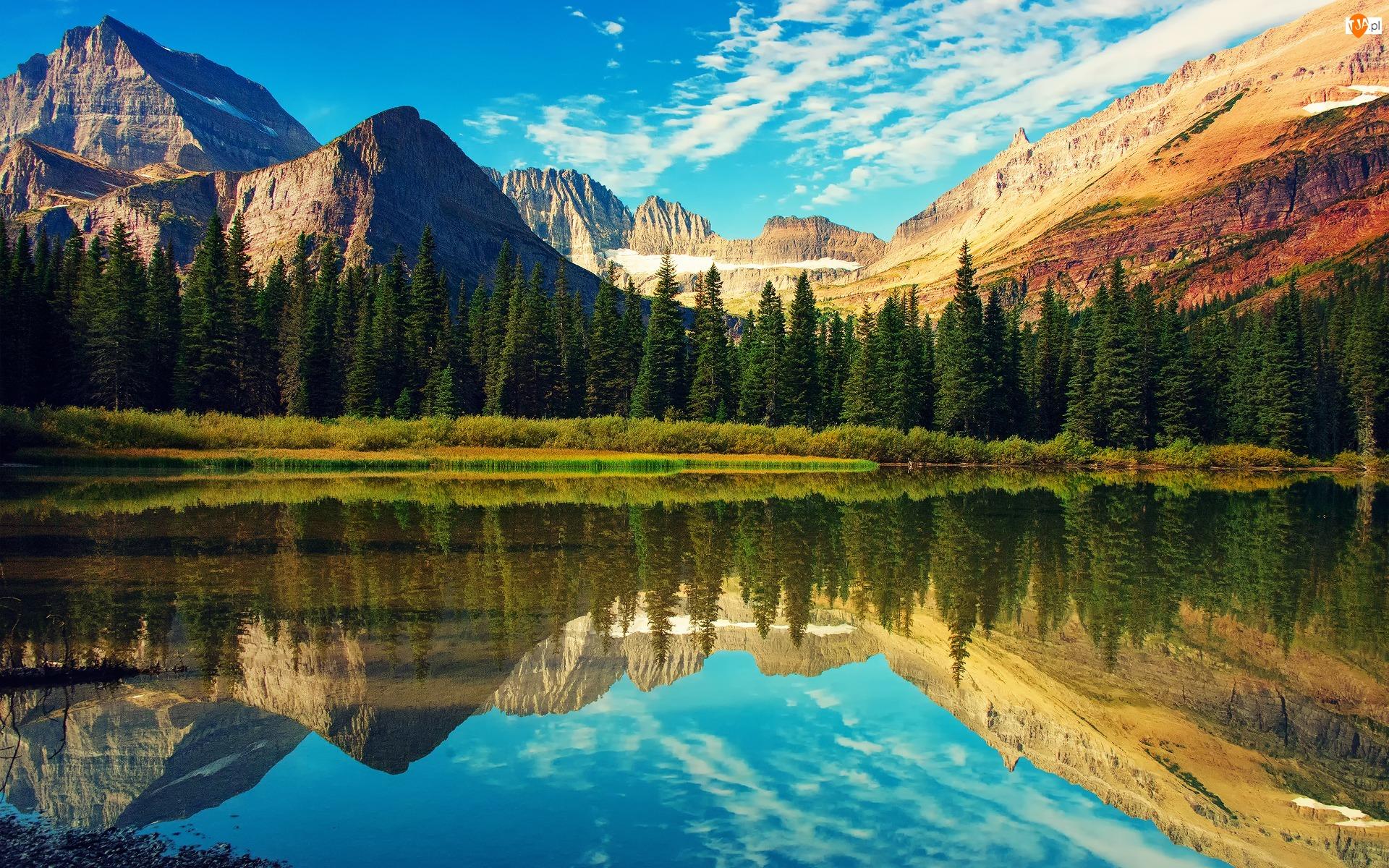 Drzewa, Stany Zjednoczone, Góry, Stan Wirginia, Jezioro Mountain Lake
