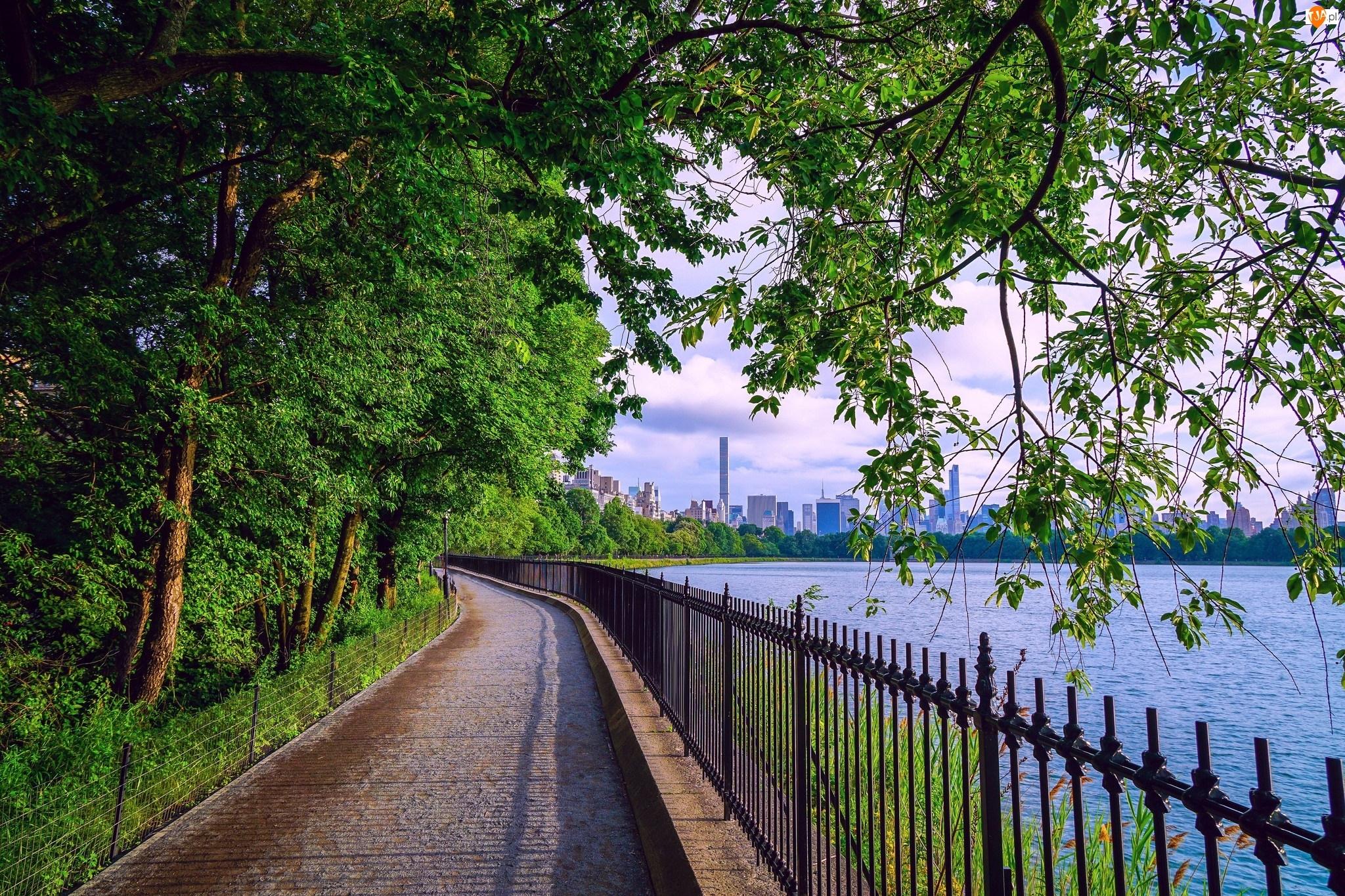Miasto, Bulwar, Drzewa, Ogrodzenie, Rzeka