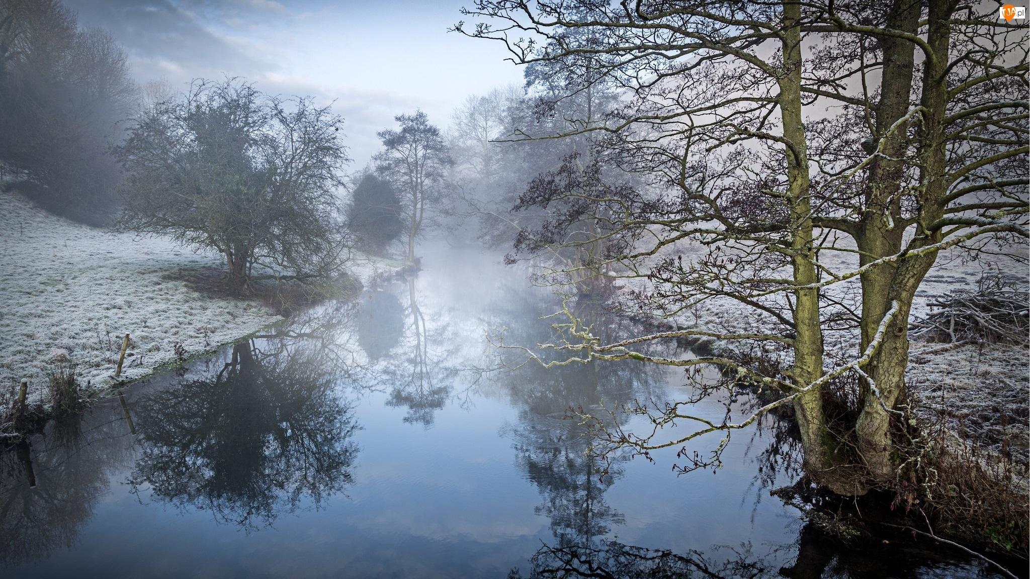 Mgła, Zima, Drzewa, Rzeka, Odbicie