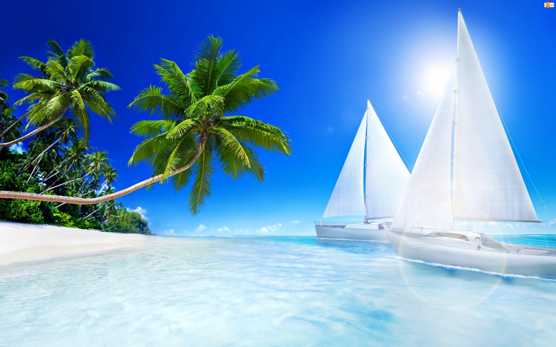 Żaglówki, Morze, Palmy
