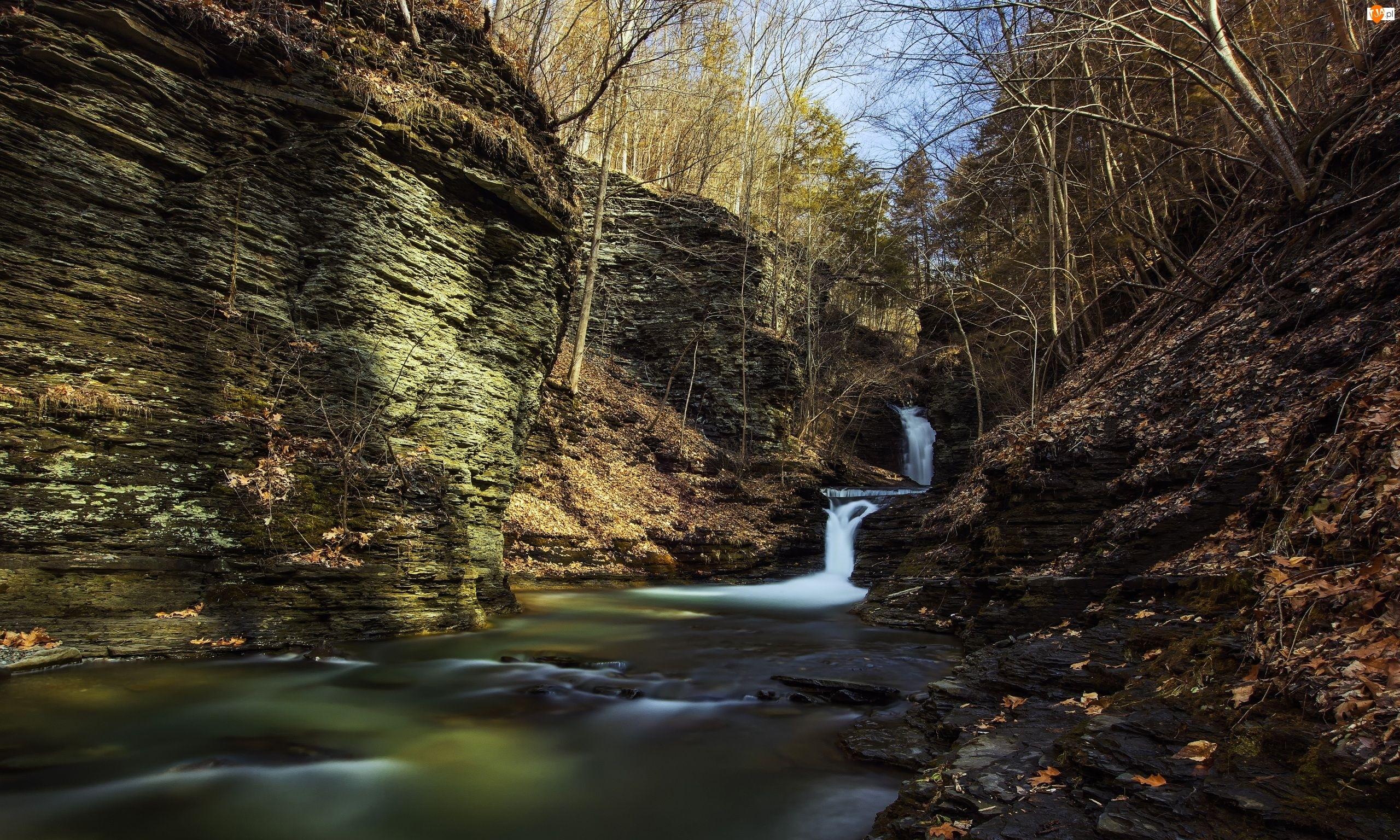 Kamienie, Wodospad Montour, Stan Nowy Jork, Stany Zjednoczone, Drzewa, Havana Glen Park, Skały