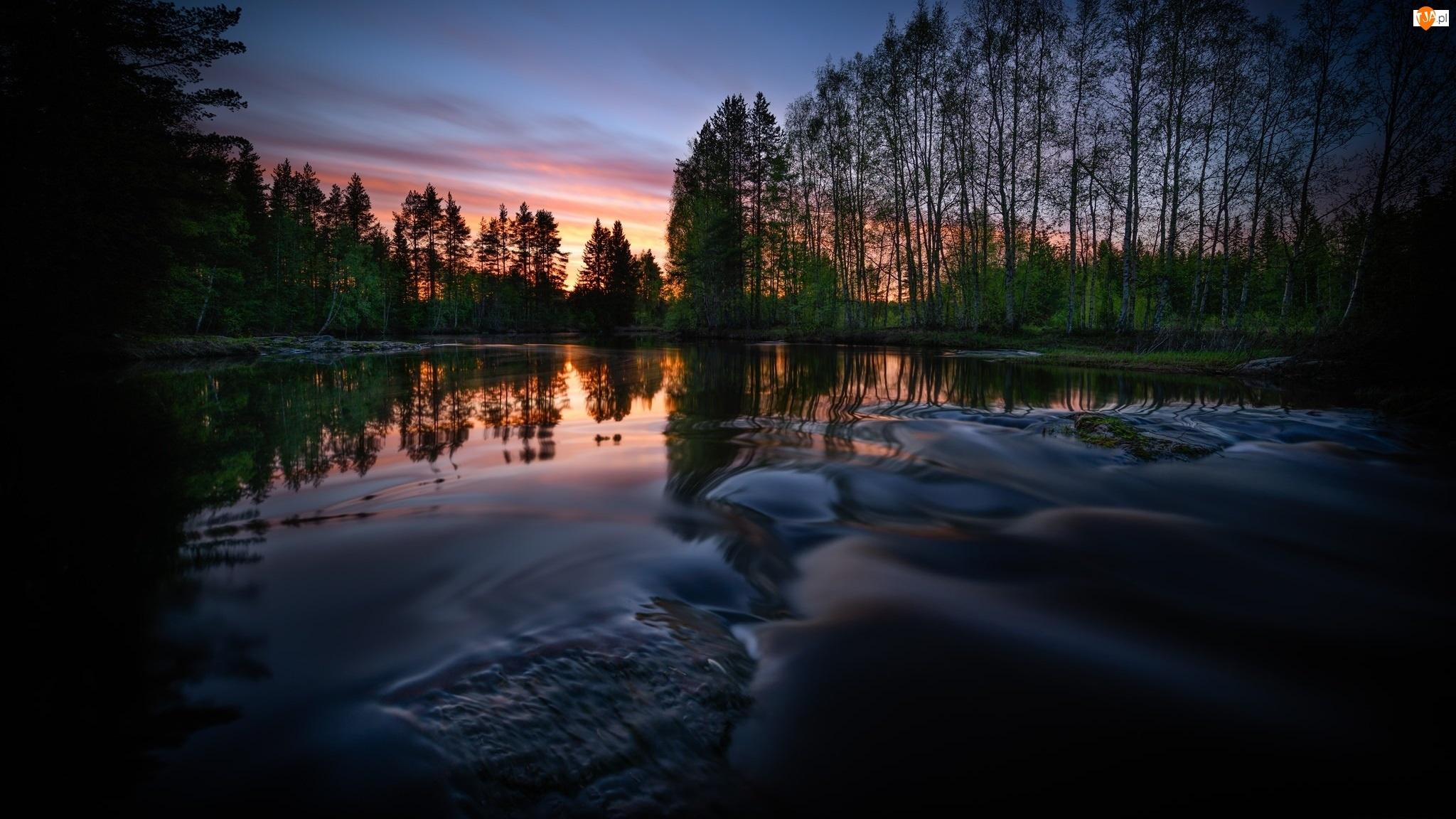 Zachód słońca, Jezioro, Drzewa