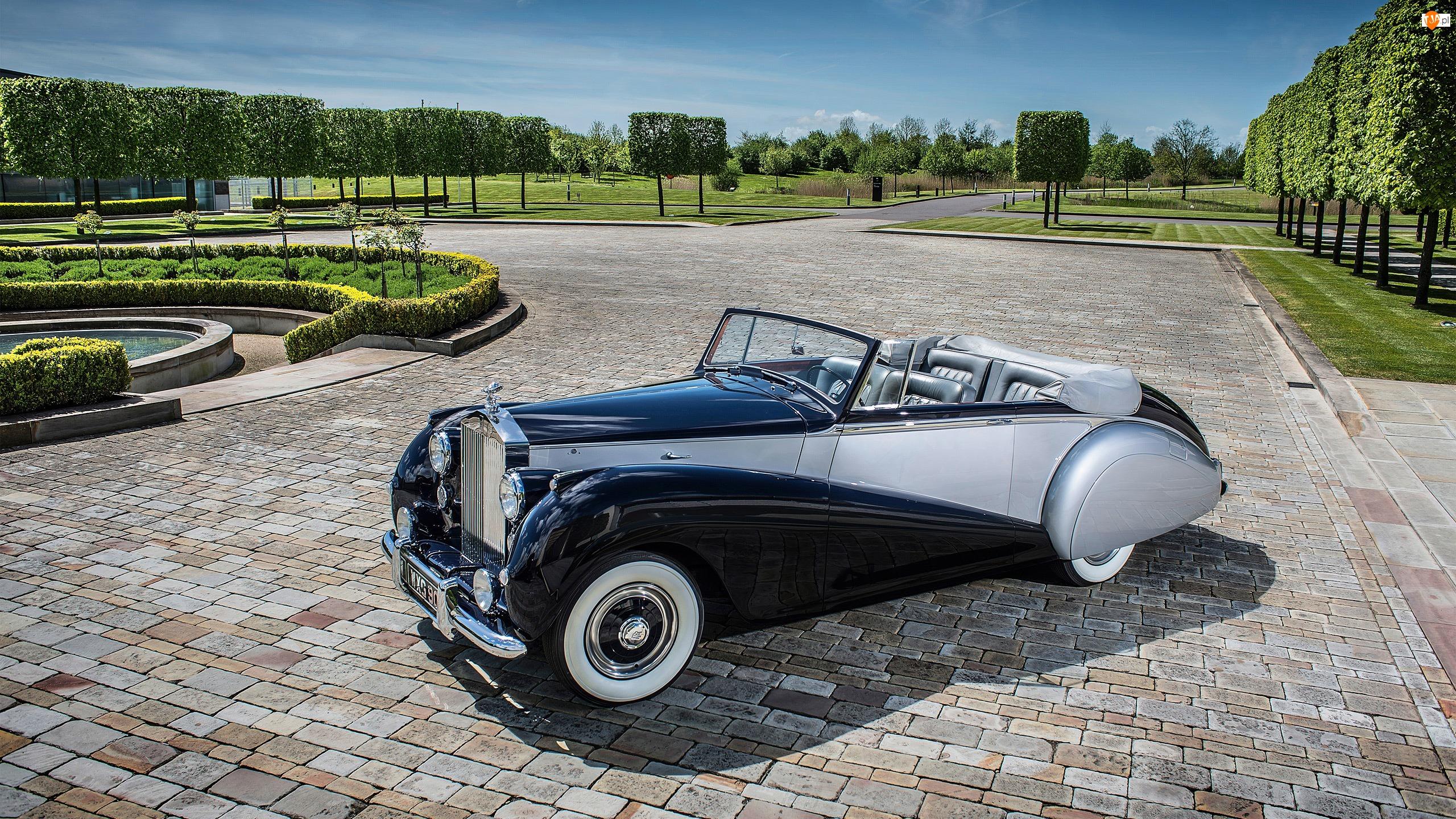 Zabytkowy, Park, Rolls Royce Silver Dawn, 1952