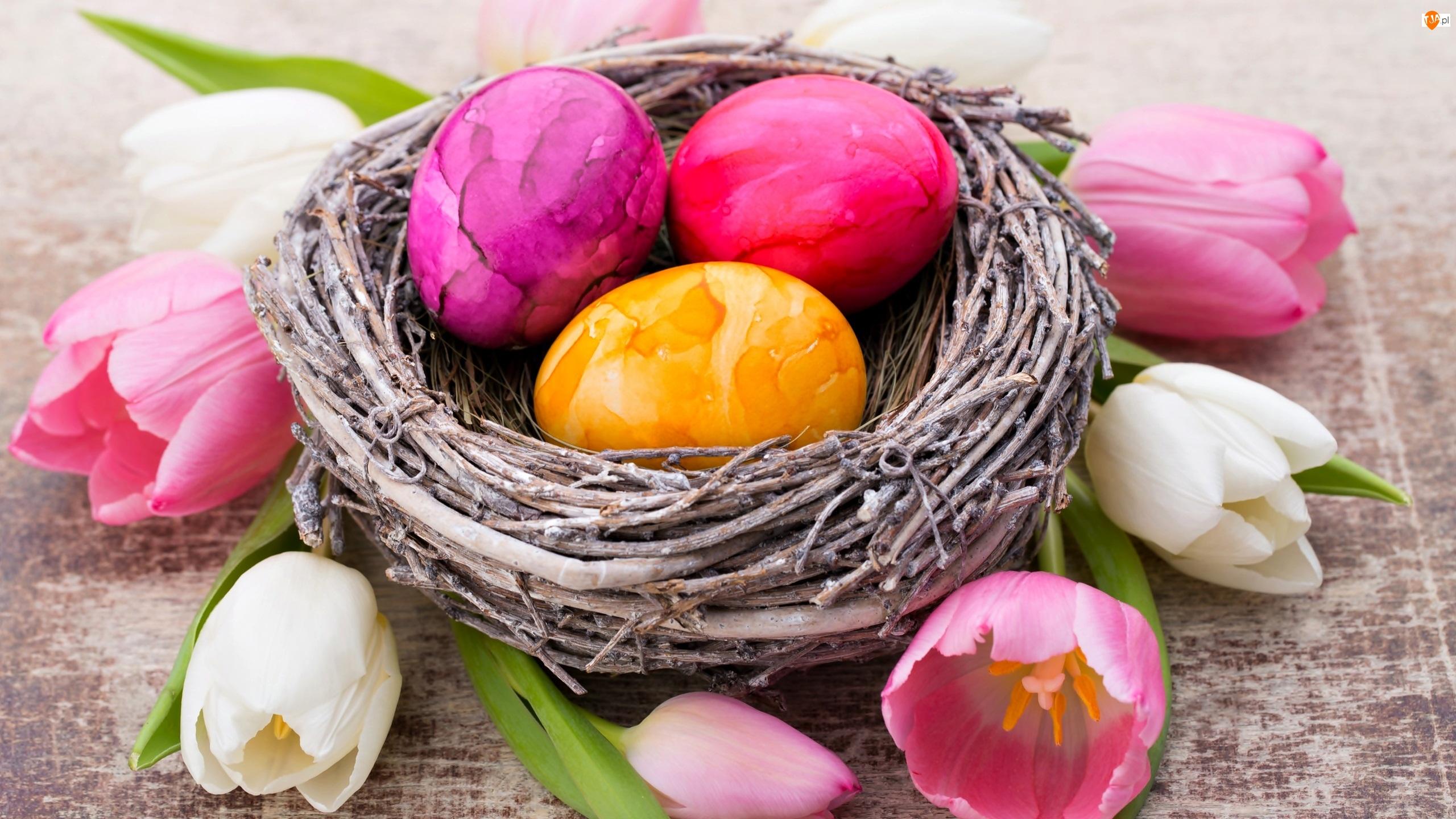 Gniazdko, Pisanki, Wielkanoc, Tulipany, Dekoracja, Kolorowe