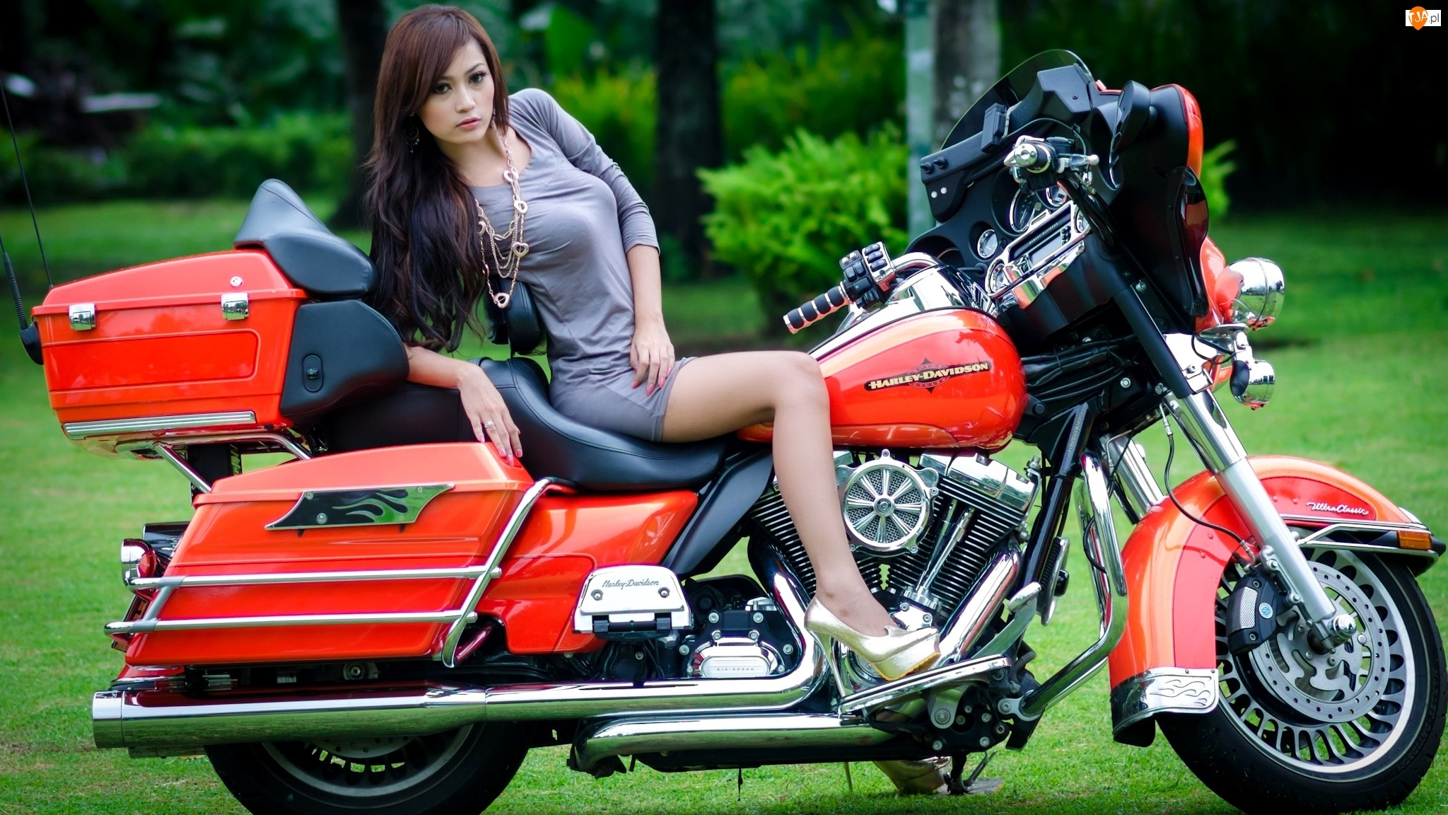 Kobieta, Harley-Davidson