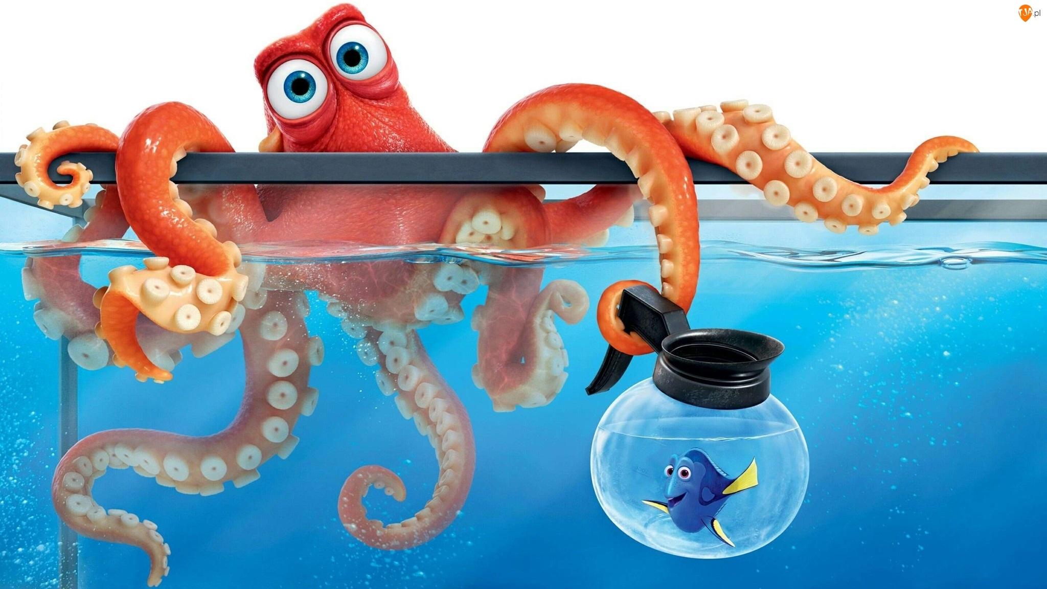Gdzie jest Dory, Akwarium, Grafika 3D, Rybka Dory, Film animowany, Ośmiornica Hank