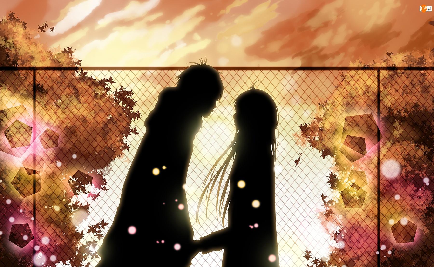 Serial, Sadako, Animowany, Kimi ni Tudoke