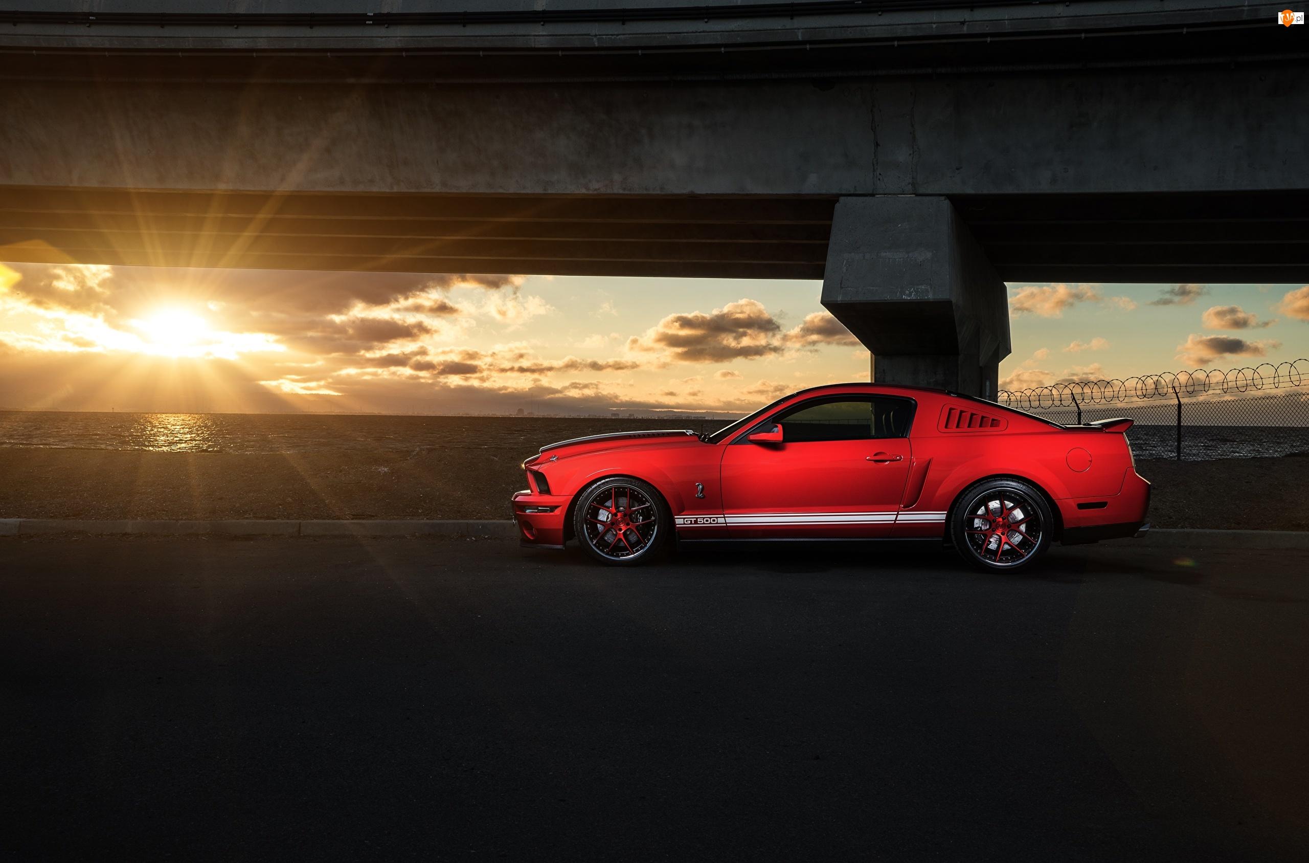 Czerwony, Słońce, Ford Mustang GT500, Promienie