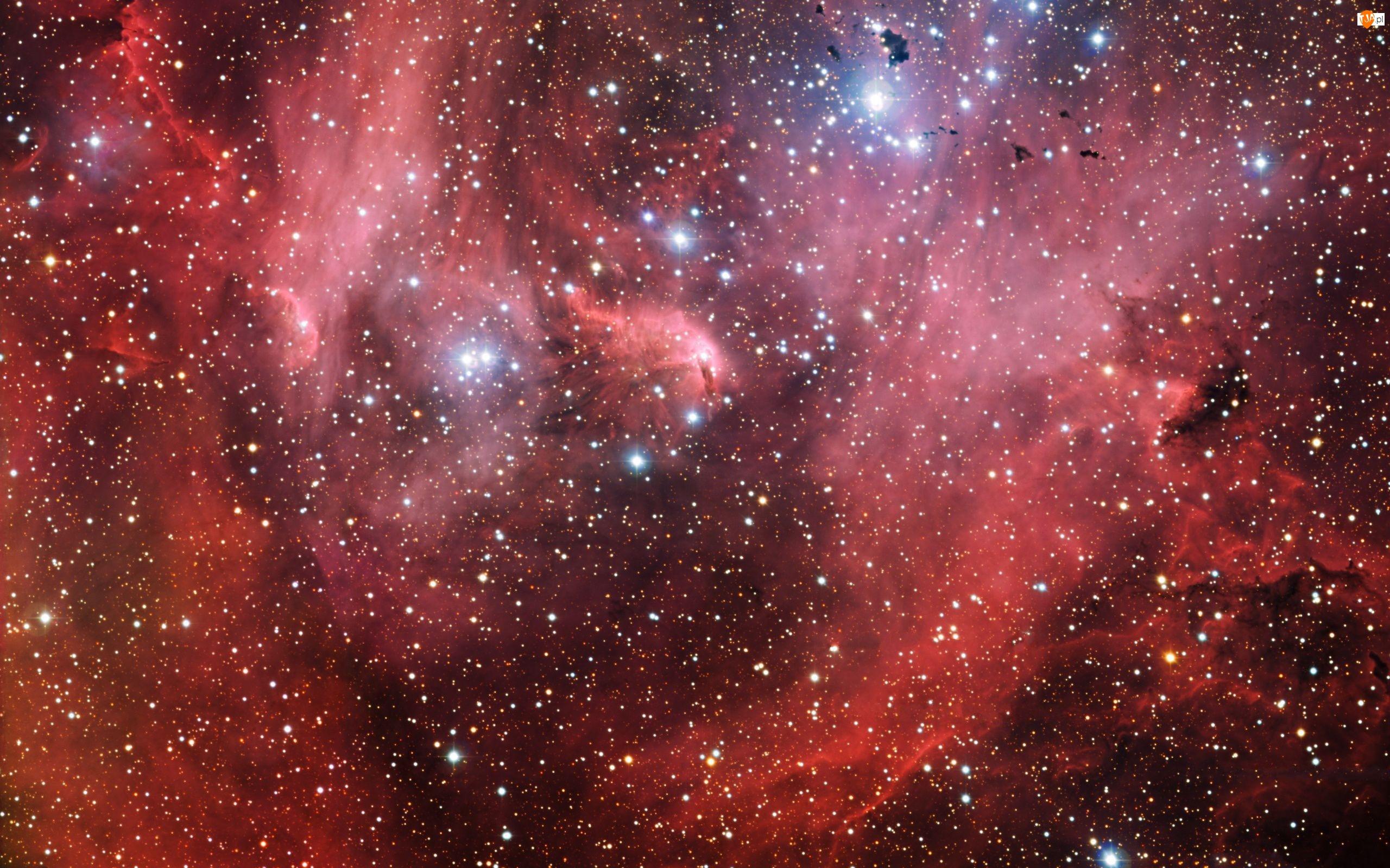 Mgławica, Kosmos, Gwiazdy