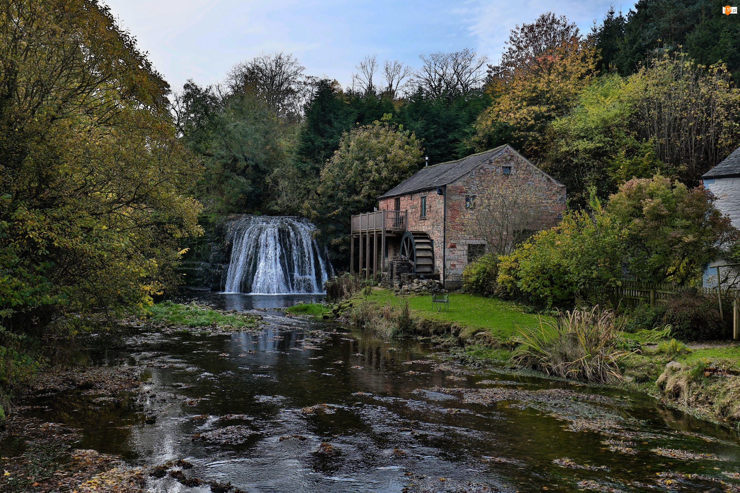 Wodospad, Rzeka, Anglia, Drzewa, Wieś Great Asby, Młyn