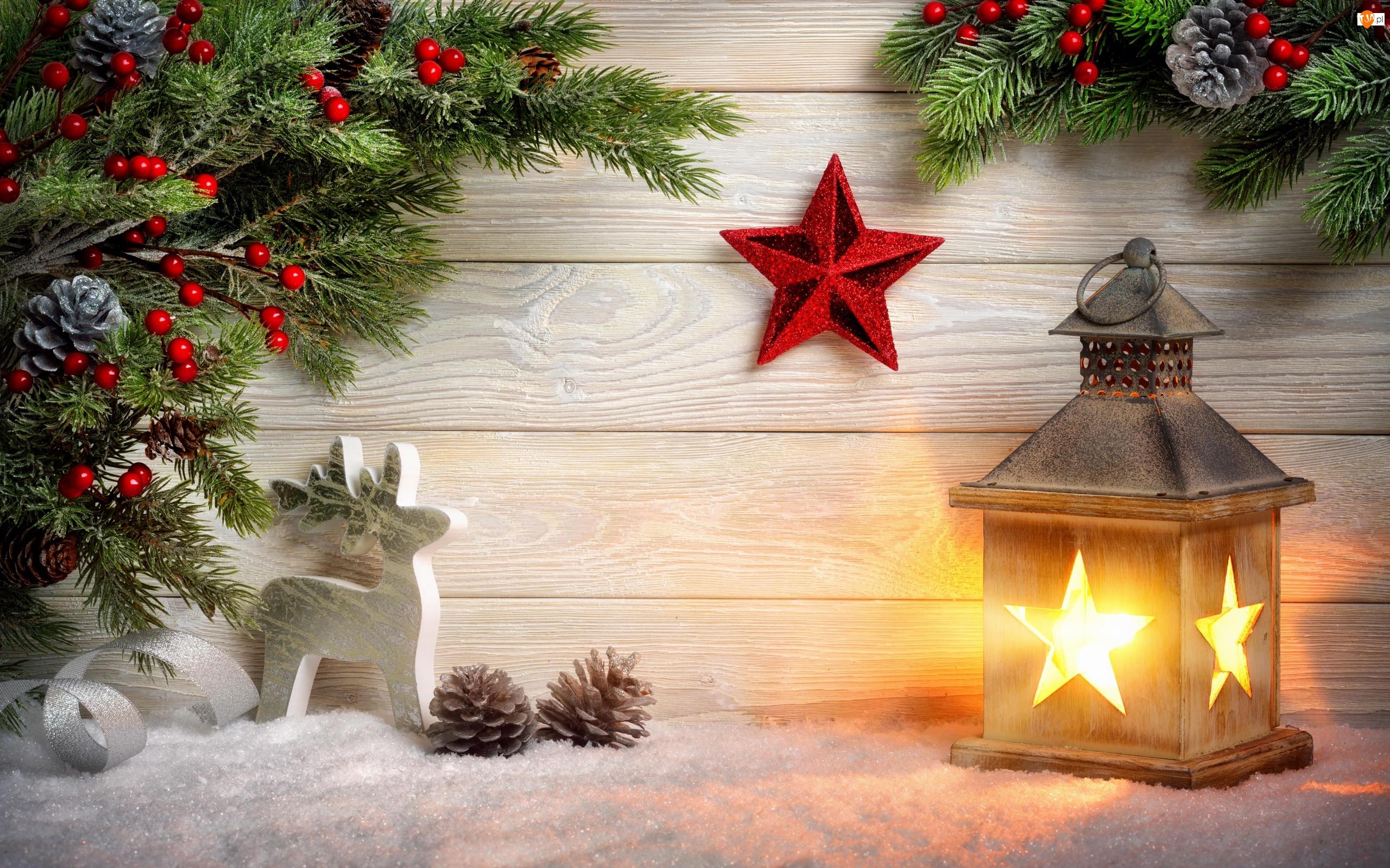 Gałązki, Renifer, Boże Narodzenie, Kompozycja, Szyszki, Lampion, Gwiazdki