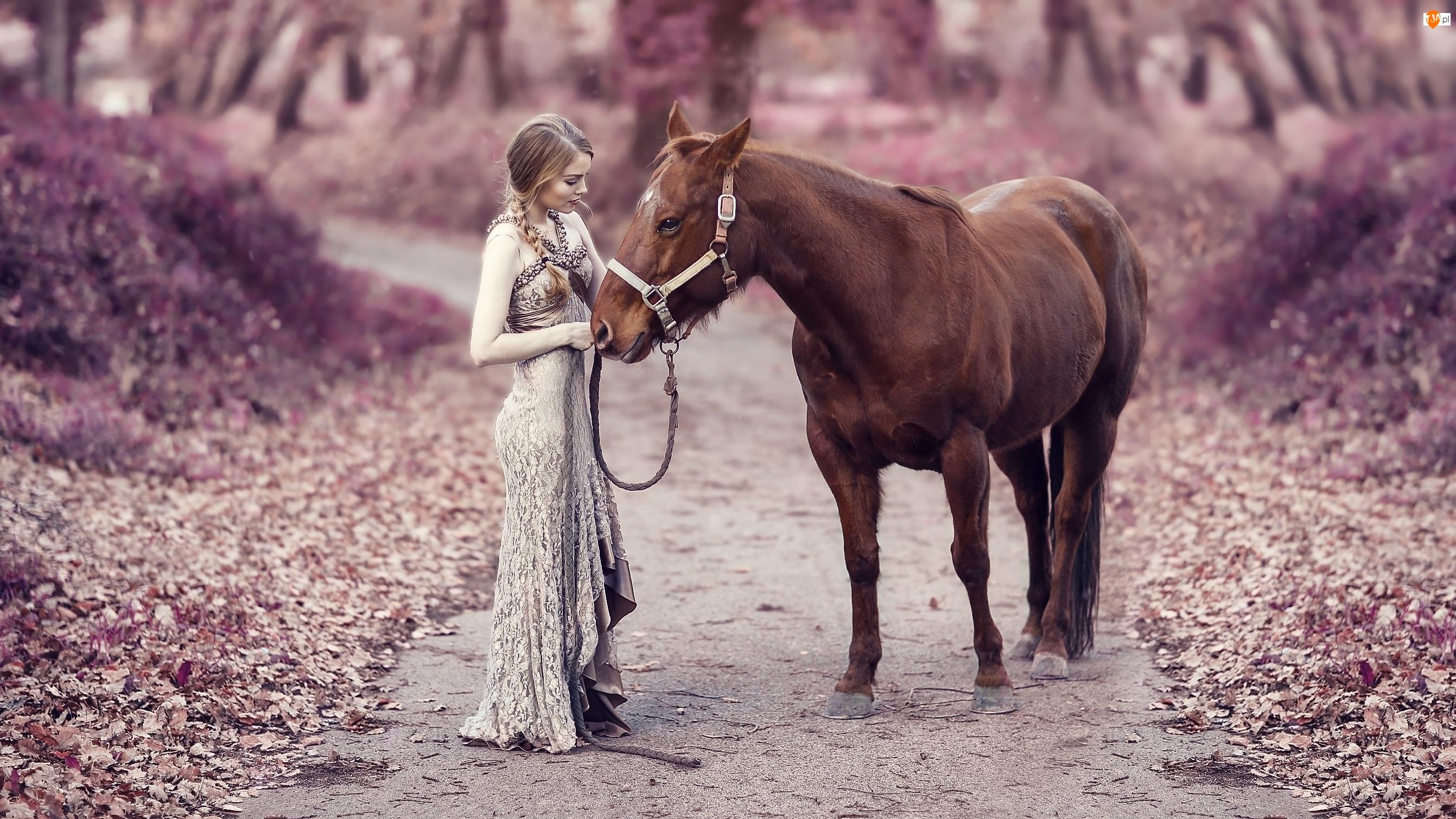 Ścieżka, Kobieta, Koń