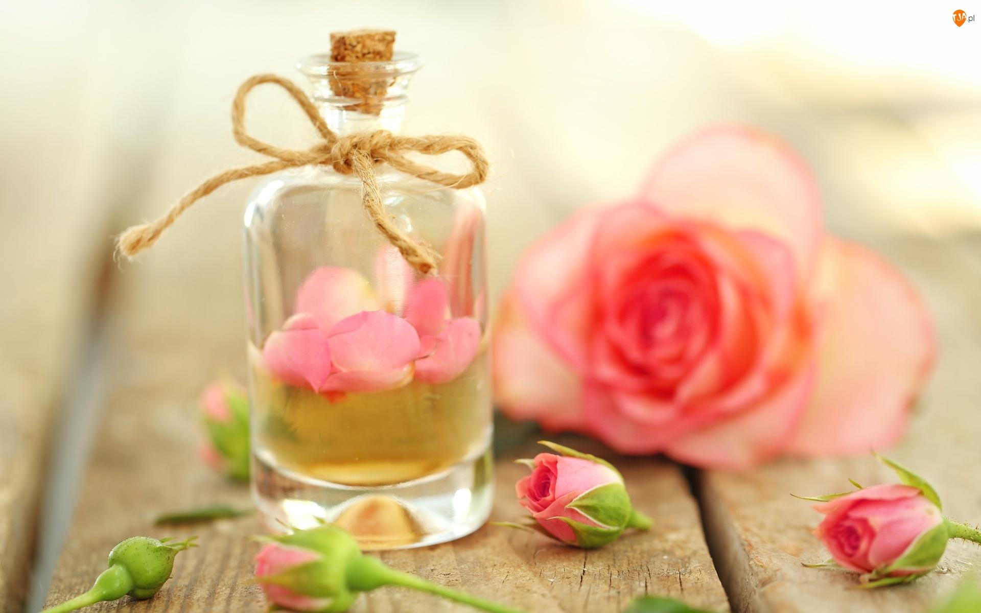 Kompozycja, Róża, Butelka, Płatki, Rozmycie