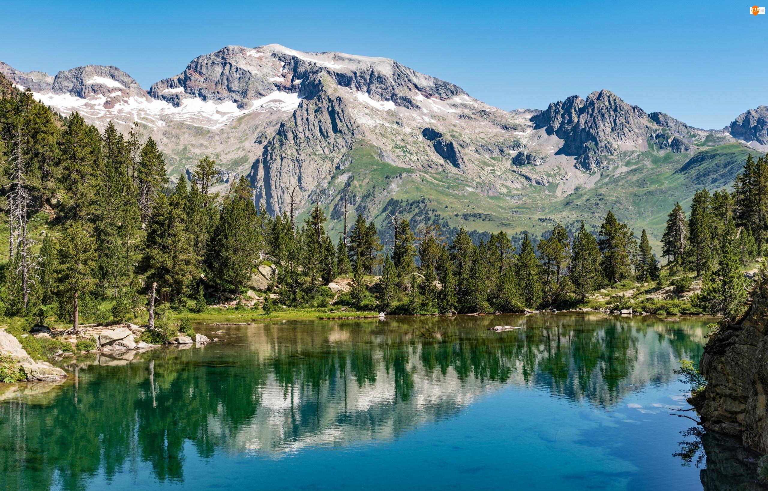 Drzewa, Hiszpania, Góry Pireneje, Aragonia, Jezioro