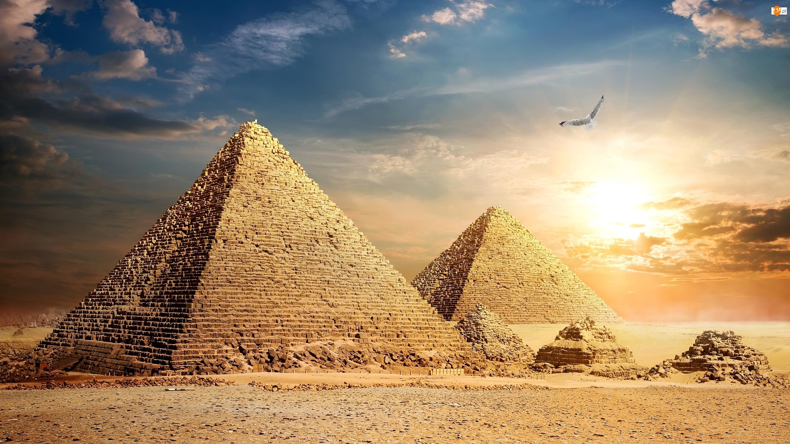 Ptak, Egipt, Piramidy, Giza, Piramida Cheopsa