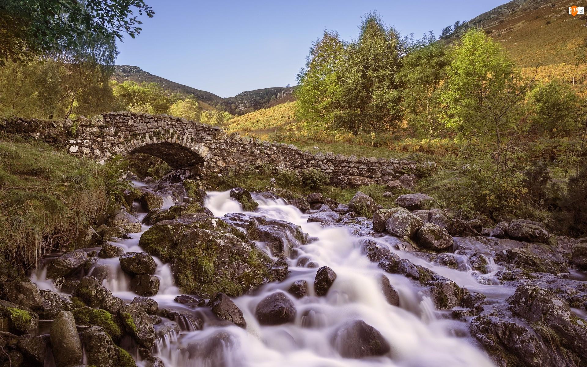 Mostek, Kamienie, Rzeka, Drzewa, Kamienny, Skały