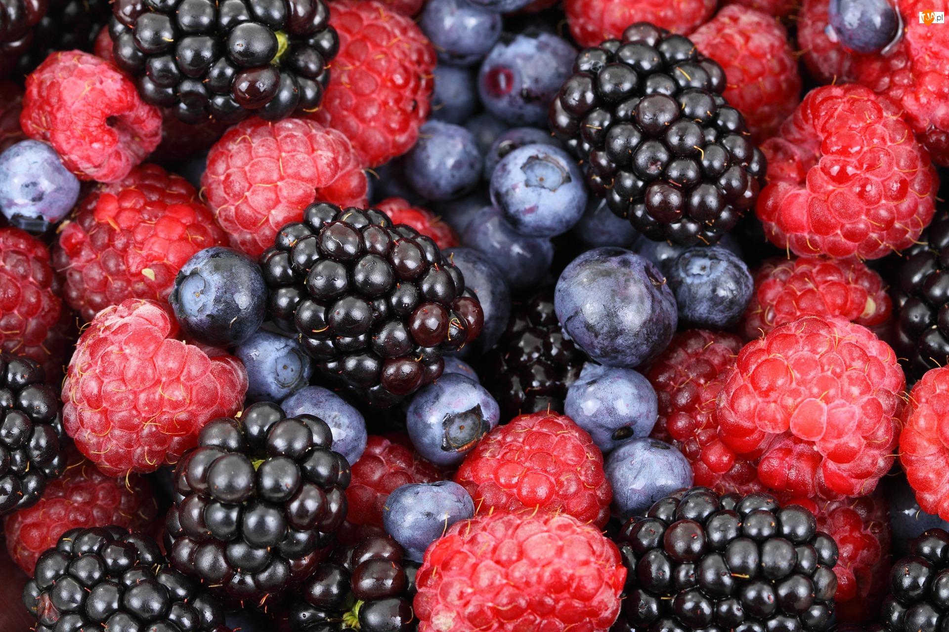 Owoce, Borówki, Jeżyny, Maliny