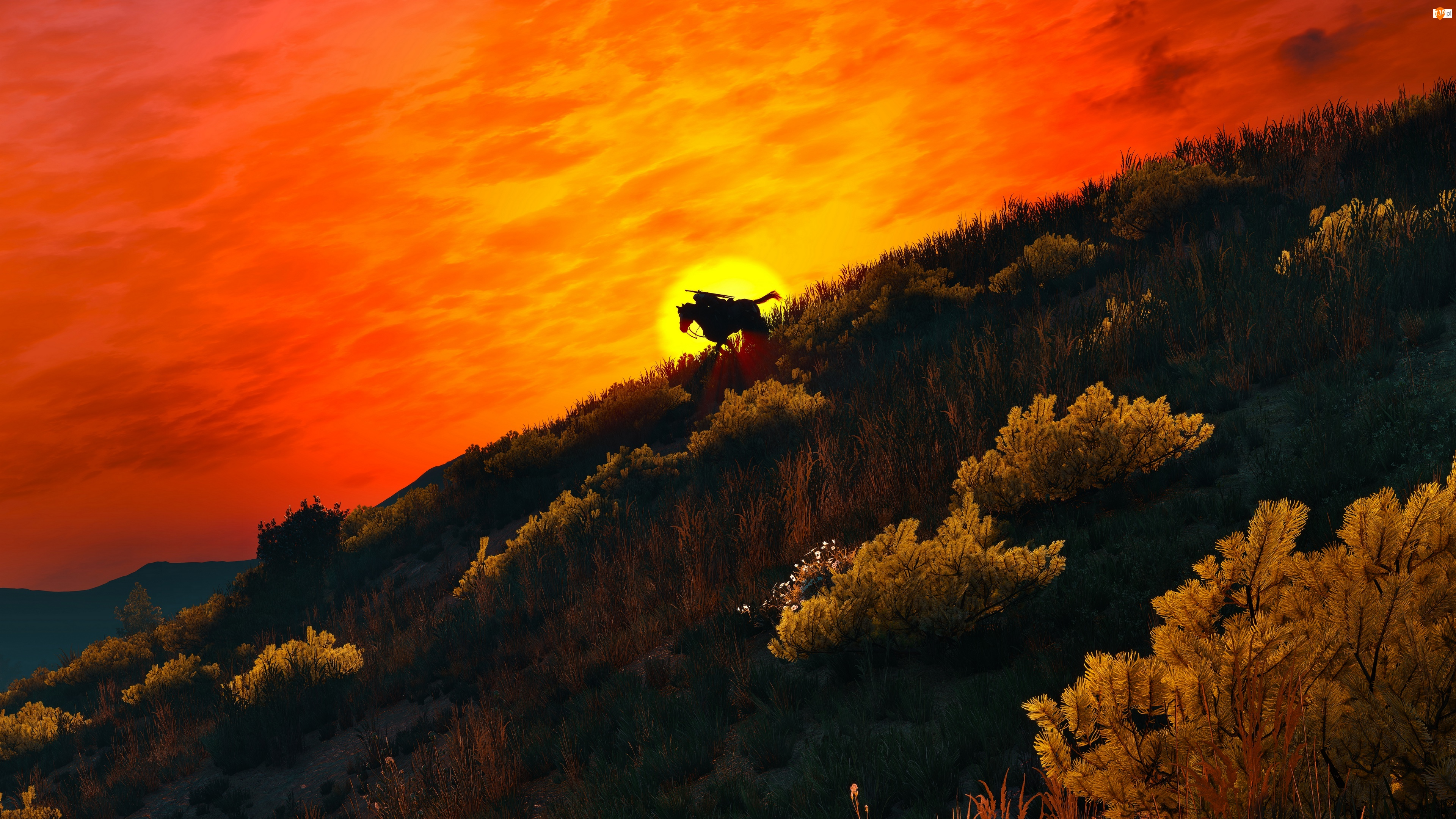 Zachód słońca, Gra, Jeździec, Wiedźmin 3 : Dziki Gon, Krajobraz