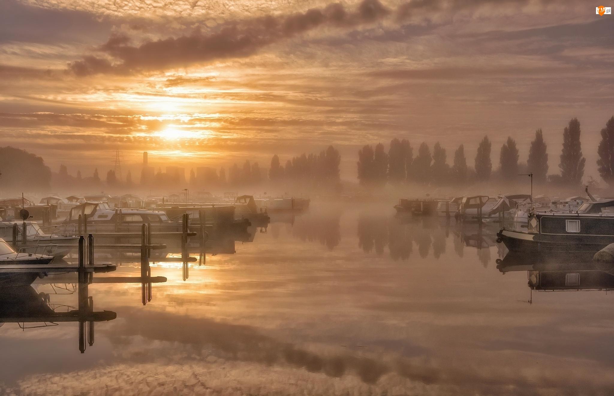 Mgła, Przystań, Motorówki, Wschód słońca, Drzewa