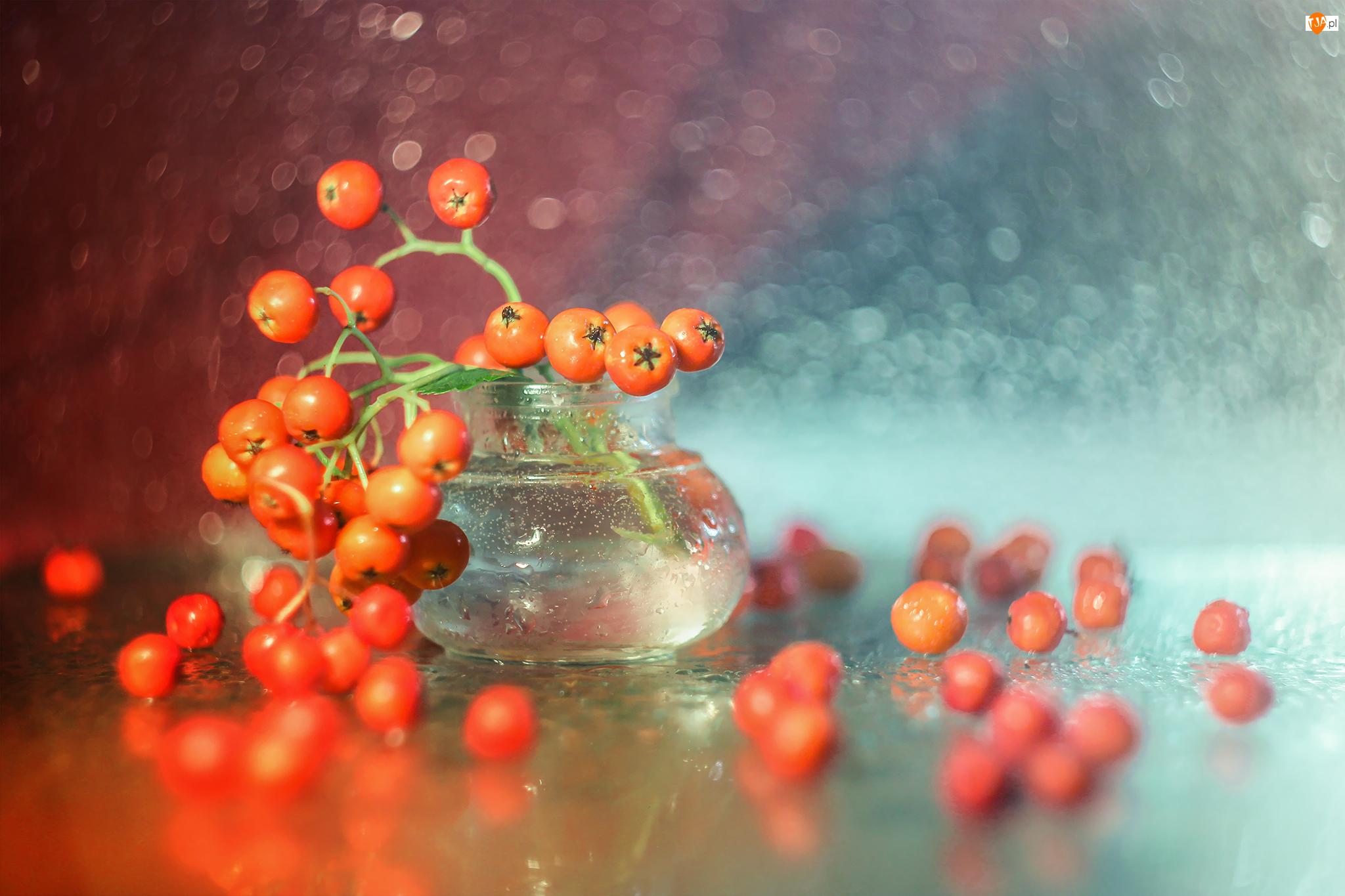 Wazonik, Dekoracja, Owoce, Czerwone, Jarzębina