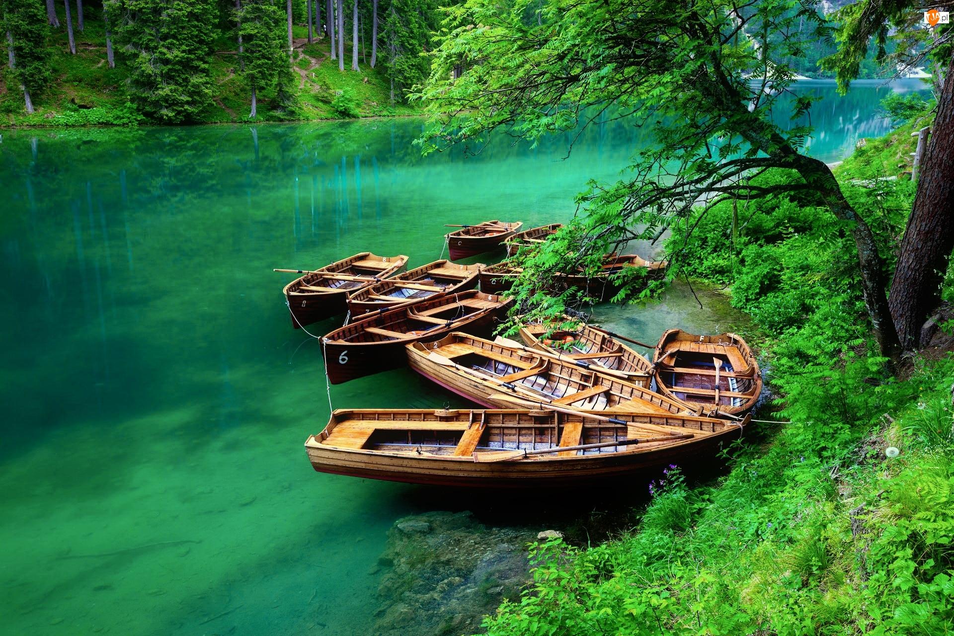 Las, Włochy, Jezioro Braies, Południowy Tyrol, Łódki