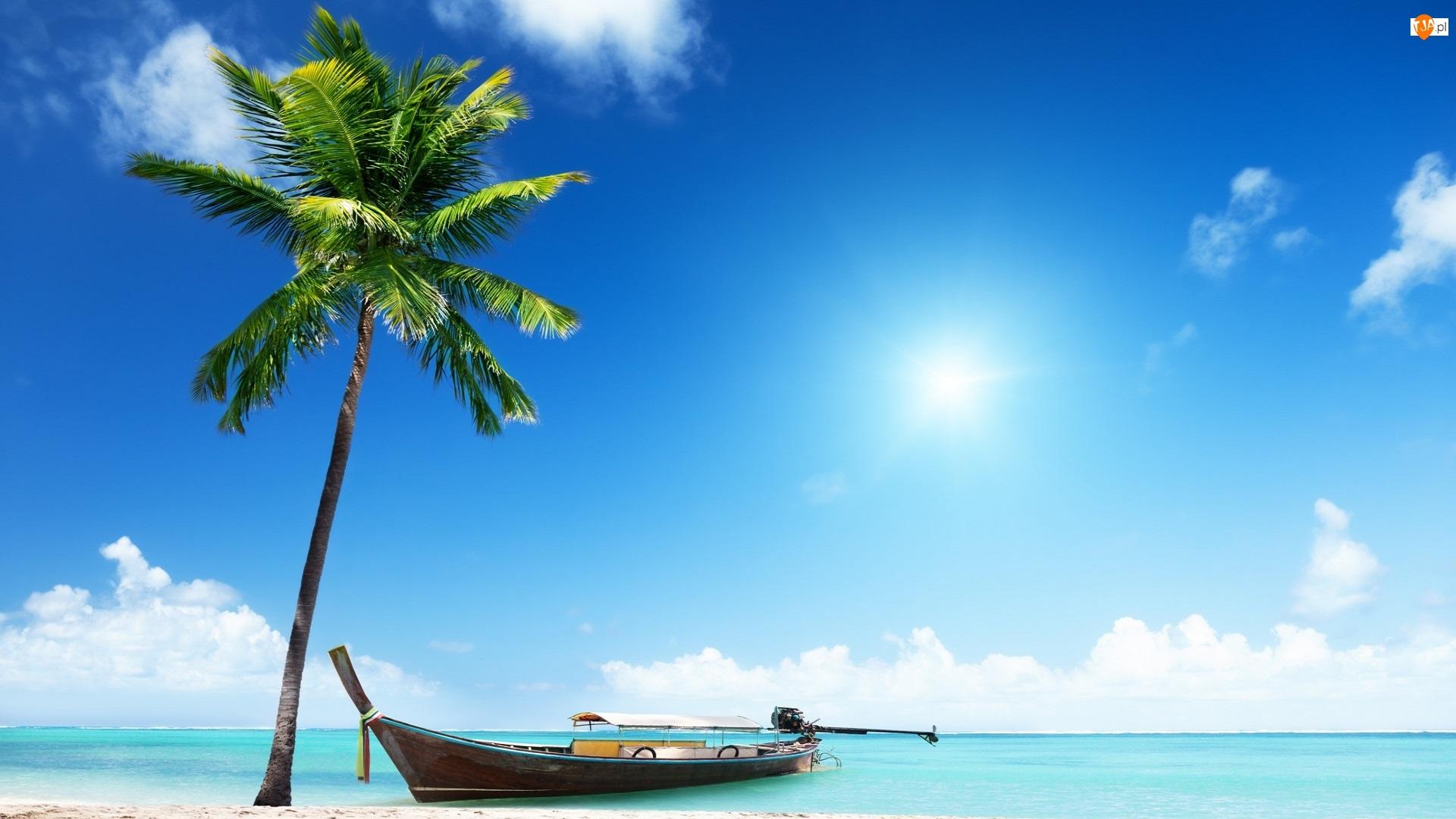 Lato, Morze, Palma, Łódka, Niebo